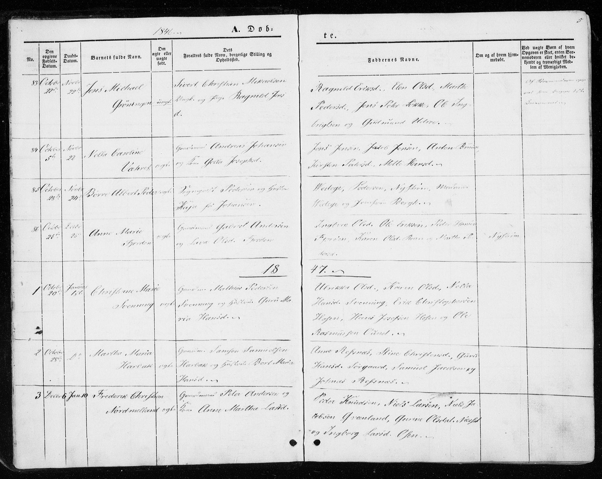 SAT, Ministerialprotokoller, klokkerbøker og fødselsregistre - Sør-Trøndelag, 657/L0704: Ministerialbok nr. 657A05, 1846-1857, s. 5