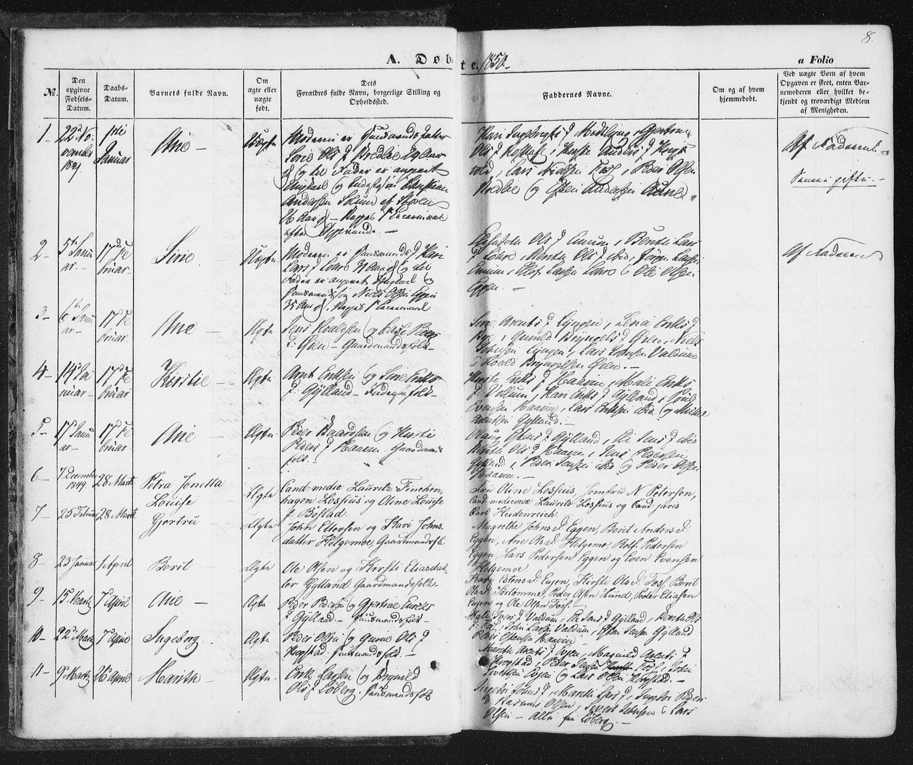 SAT, Ministerialprotokoller, klokkerbøker og fødselsregistre - Sør-Trøndelag, 692/L1103: Ministerialbok nr. 692A03, 1849-1870, s. 8