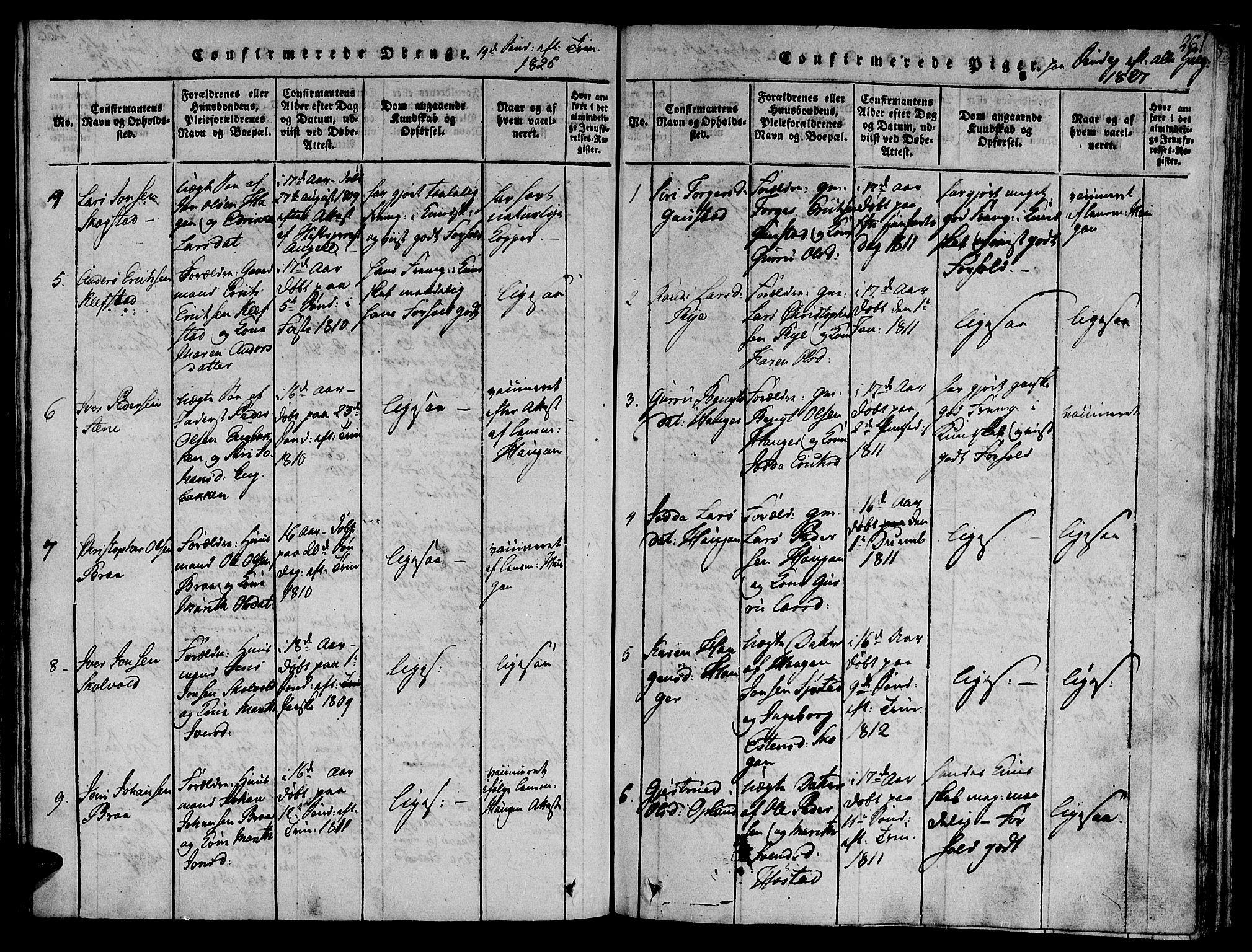 SAT, Ministerialprotokoller, klokkerbøker og fødselsregistre - Sør-Trøndelag, 612/L0372: Ministerialbok nr. 612A06 /1, 1816-1828, s. 261