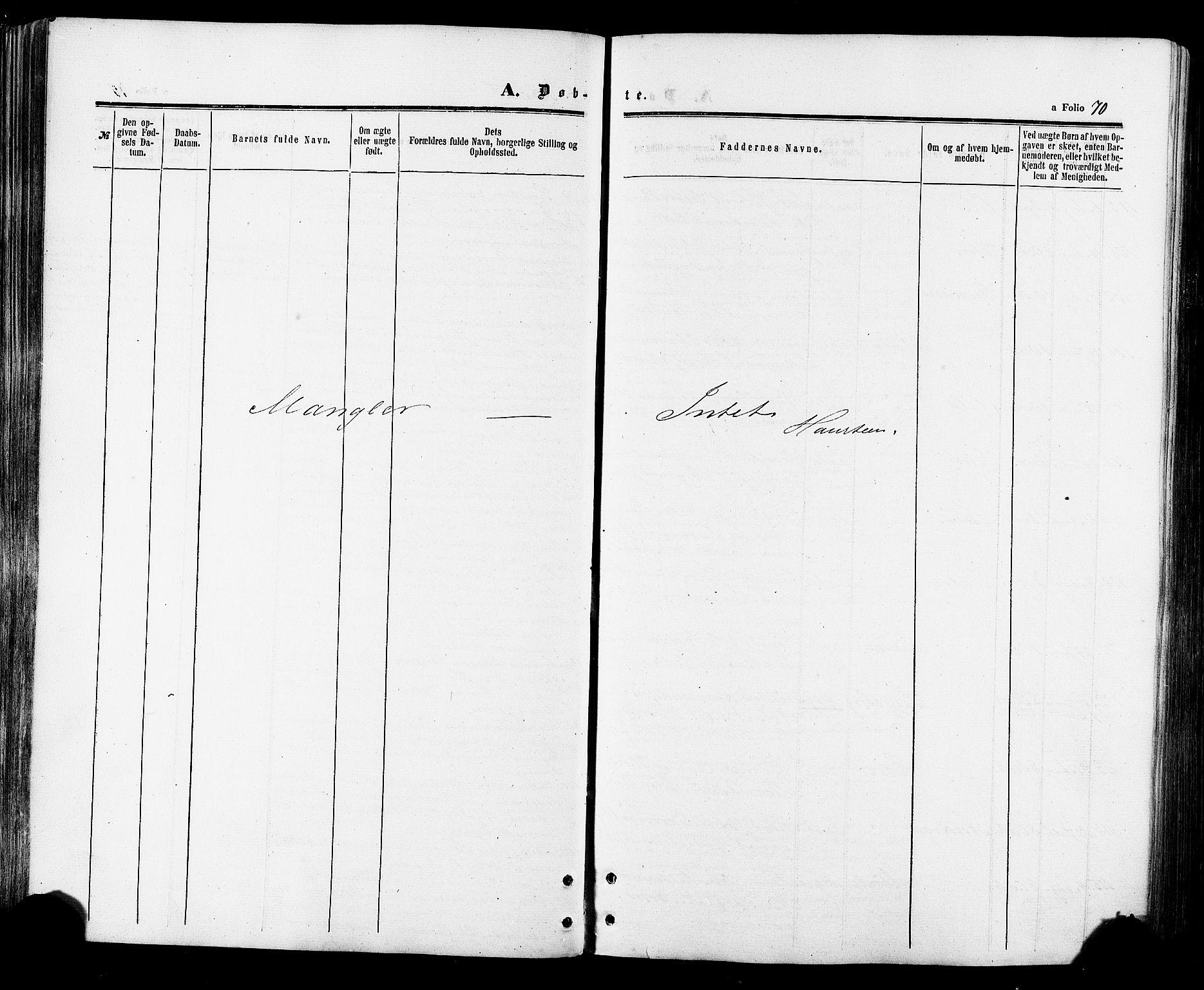 SAT, Ministerialprotokoller, klokkerbøker og fødselsregistre - Sør-Trøndelag, 695/L1147: Ministerialbok nr. 695A07, 1860-1877, s. 70