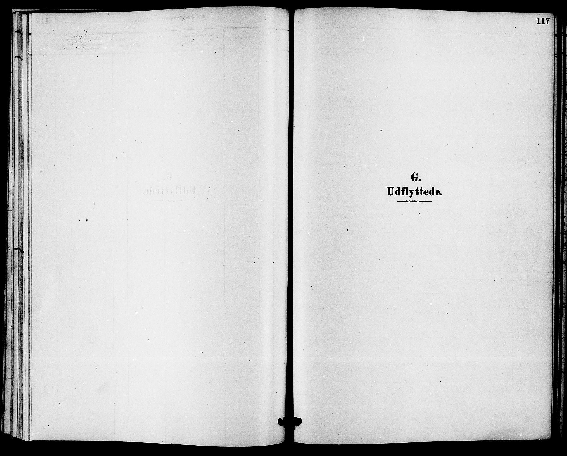 SAKO, Solum kirkebøker, F/Fc/L0001: Ministerialbok nr. III 1, 1877-1891, s. 117