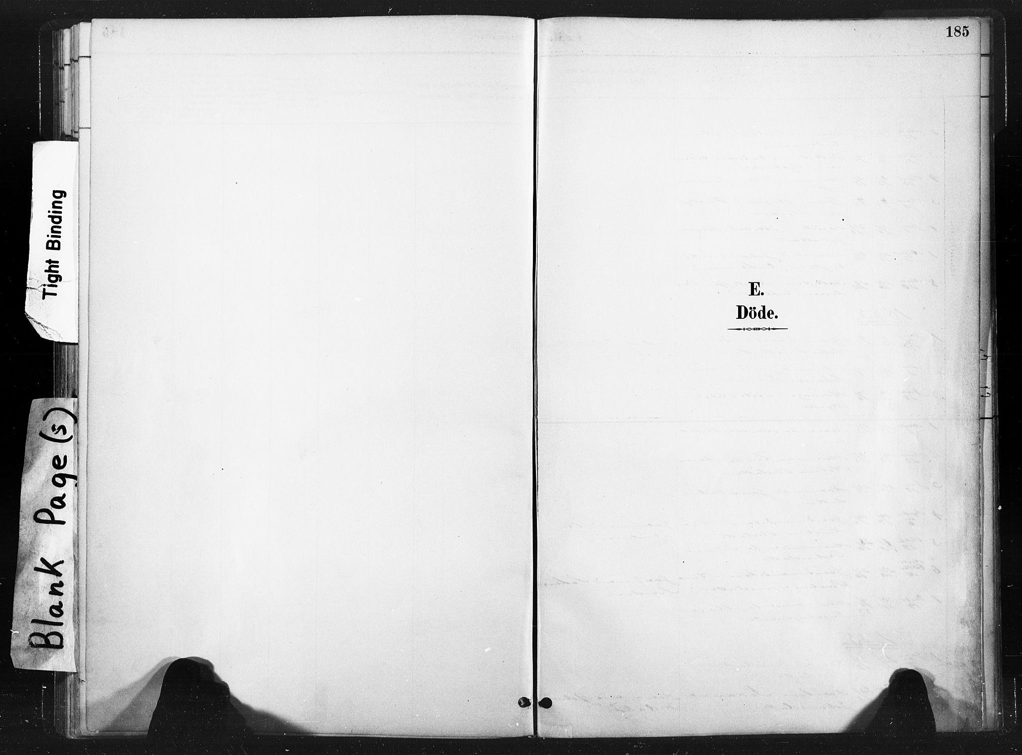 SAT, Ministerialprotokoller, klokkerbøker og fødselsregistre - Nord-Trøndelag, 736/L0361: Ministerialbok nr. 736A01, 1884-1906, s. 185