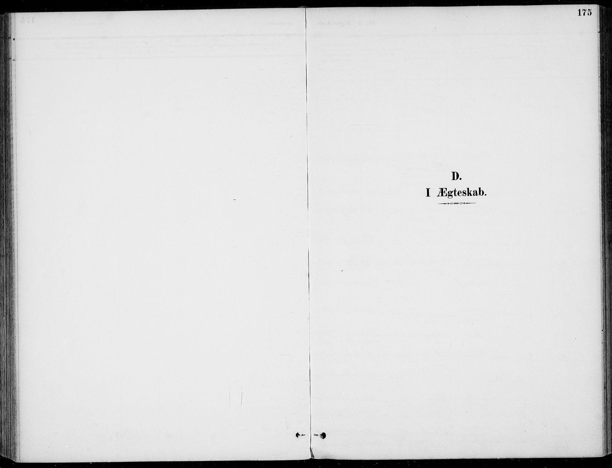 SAKO, Sigdal kirkebøker, F/Fb/L0001: Ministerialbok nr. II 1, 1888-1900, s. 175
