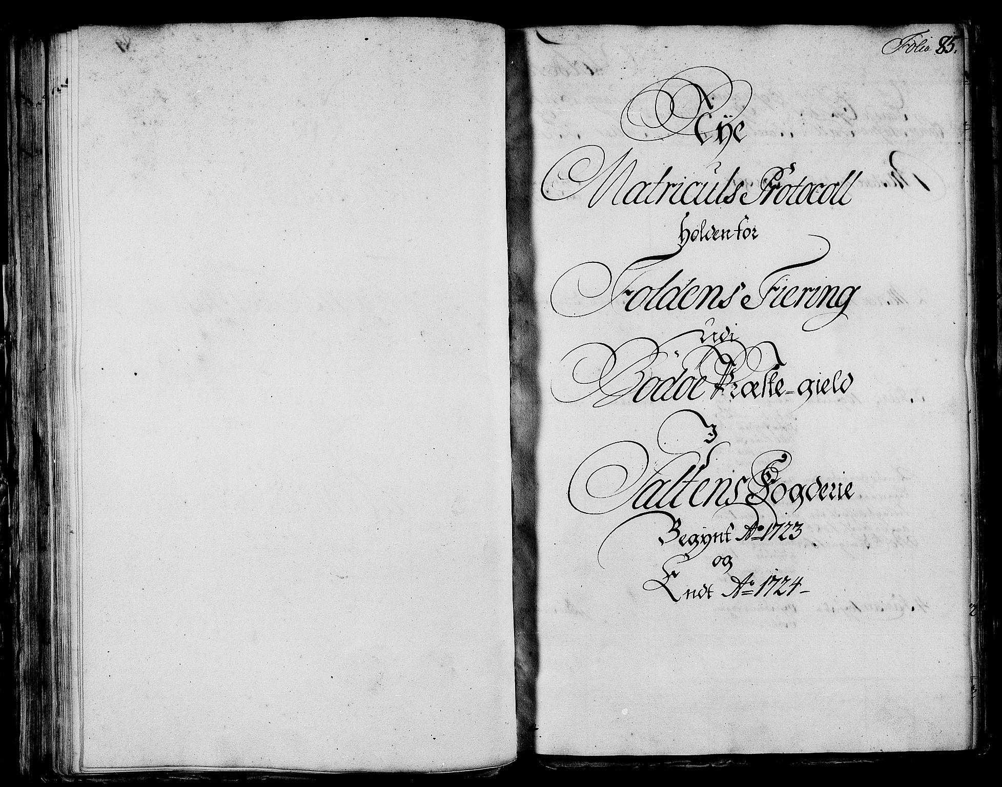RA, Rentekammeret inntil 1814, Realistisk ordnet avdeling, N/Nb/Nbf/L0172: Salten eksaminasjonsprotokoll, 1723, s. 84b-85a