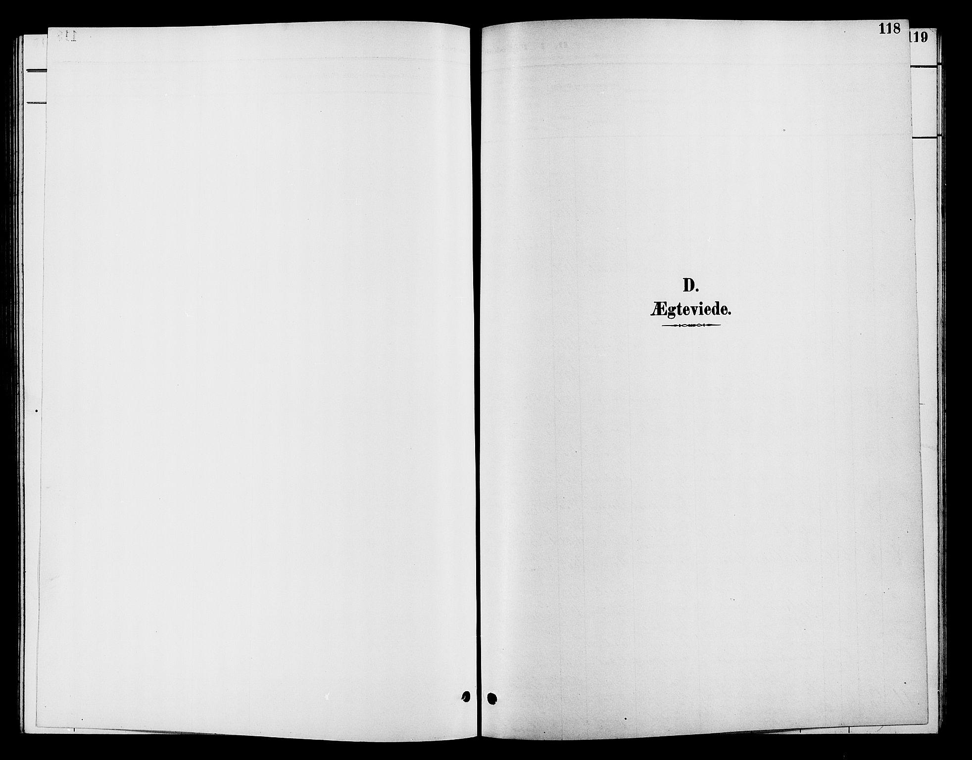 SAH, Vardal prestekontor, H/Ha/Hab/L0009: Klokkerbok nr. 9, 1894-1902, s. 118