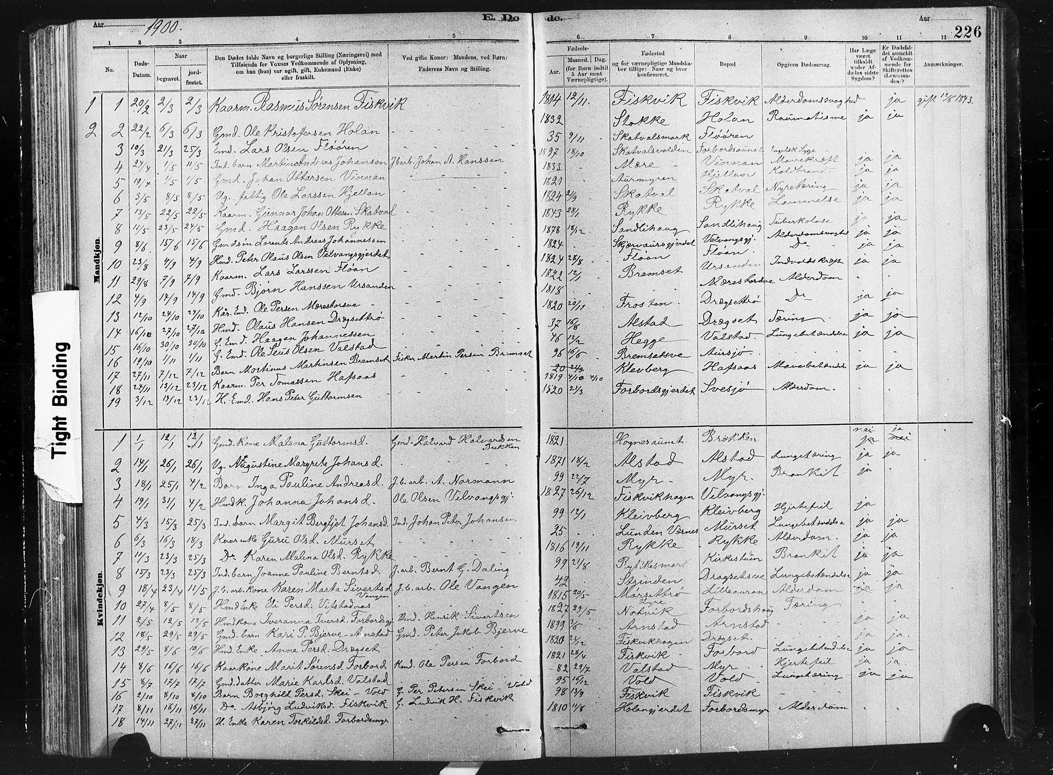SAT, Ministerialprotokoller, klokkerbøker og fødselsregistre - Nord-Trøndelag, 712/L0103: Klokkerbok nr. 712C01, 1878-1917, s. 226