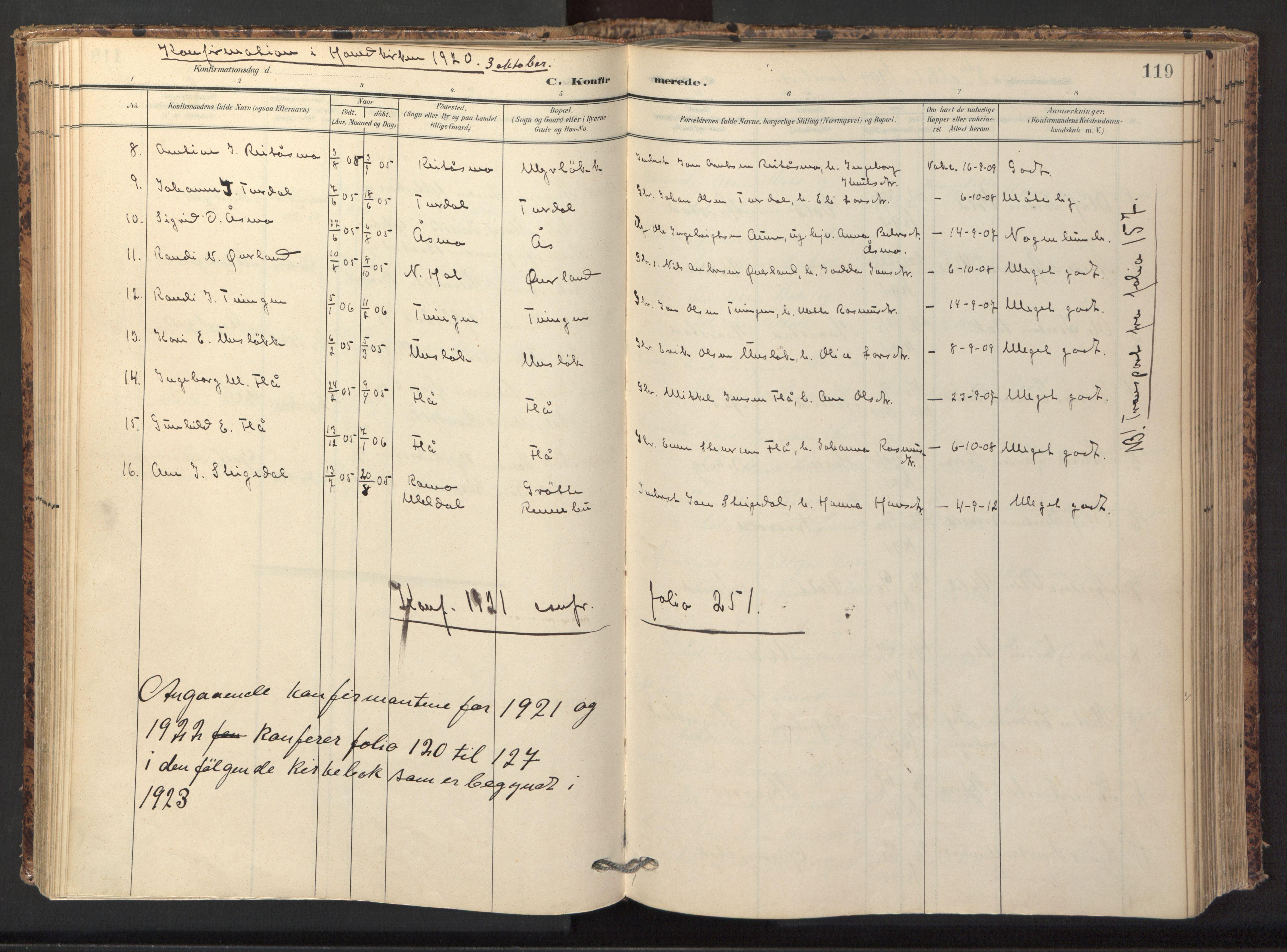 SAT, Ministerialprotokoller, klokkerbøker og fødselsregistre - Sør-Trøndelag, 674/L0873: Ministerialbok nr. 674A05, 1908-1923, s. 119