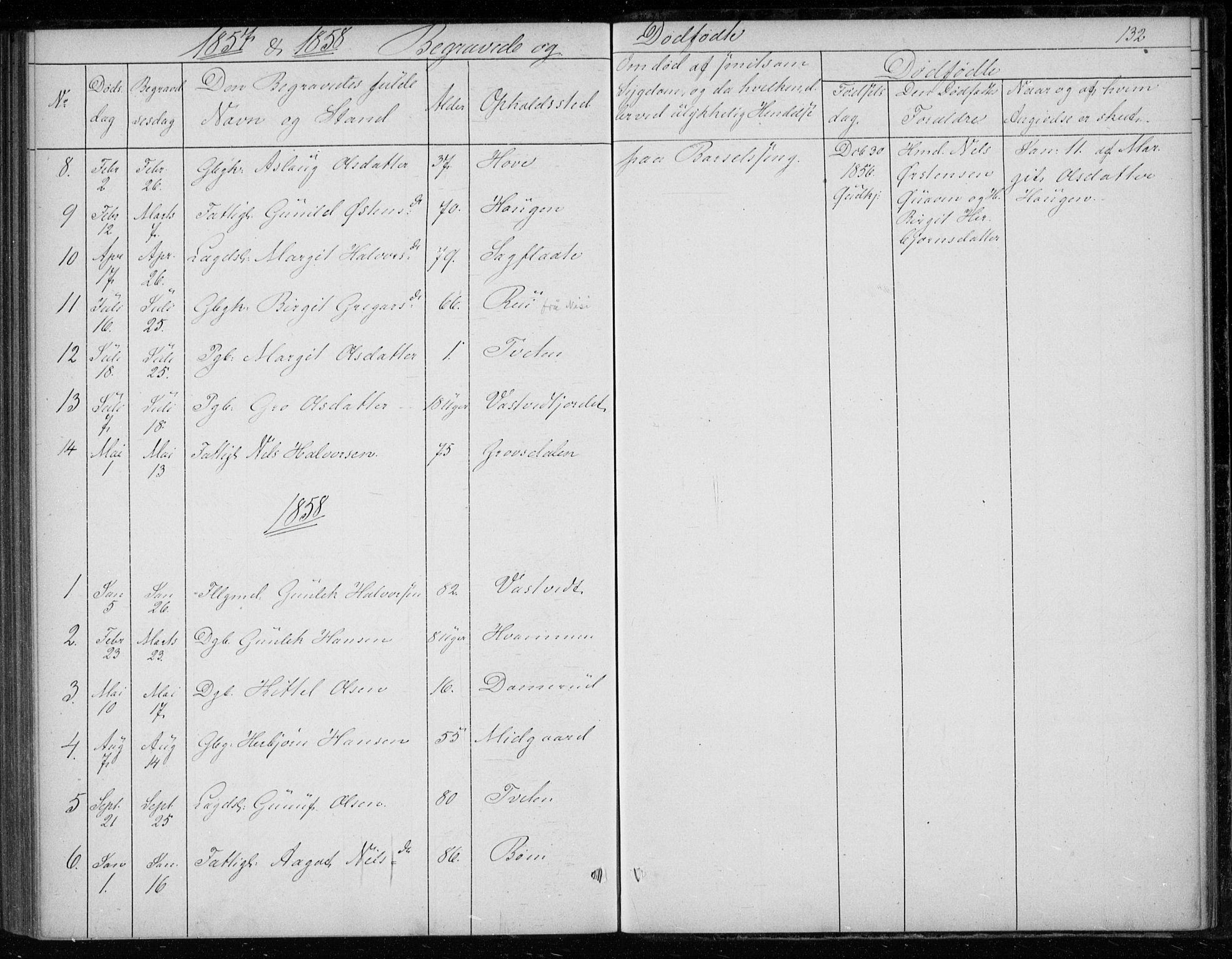 SAKO, Gransherad kirkebøker, F/Fb/L0003: Ministerialbok nr. II 3, 1844-1859, s. 132