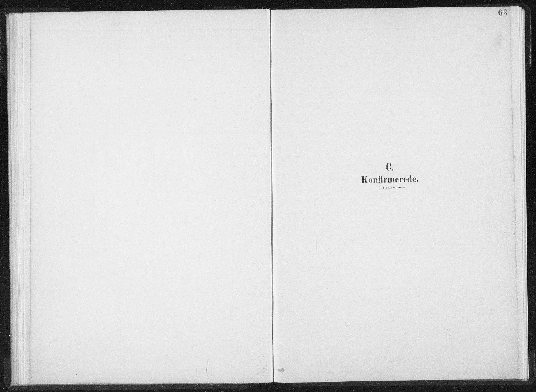 SAT, Ministerialprotokoller, klokkerbøker og fødselsregistre - Nord-Trøndelag, 724/L0263: Ministerialbok nr. 724A01, 1891-1907, s. 63