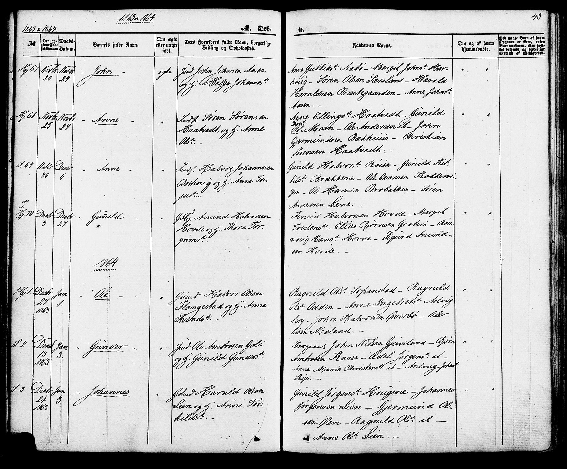 SAKO, Hjartdal kirkebøker, F/Fa/L0009: Ministerialbok nr. I 9, 1860-1879, s. 43
