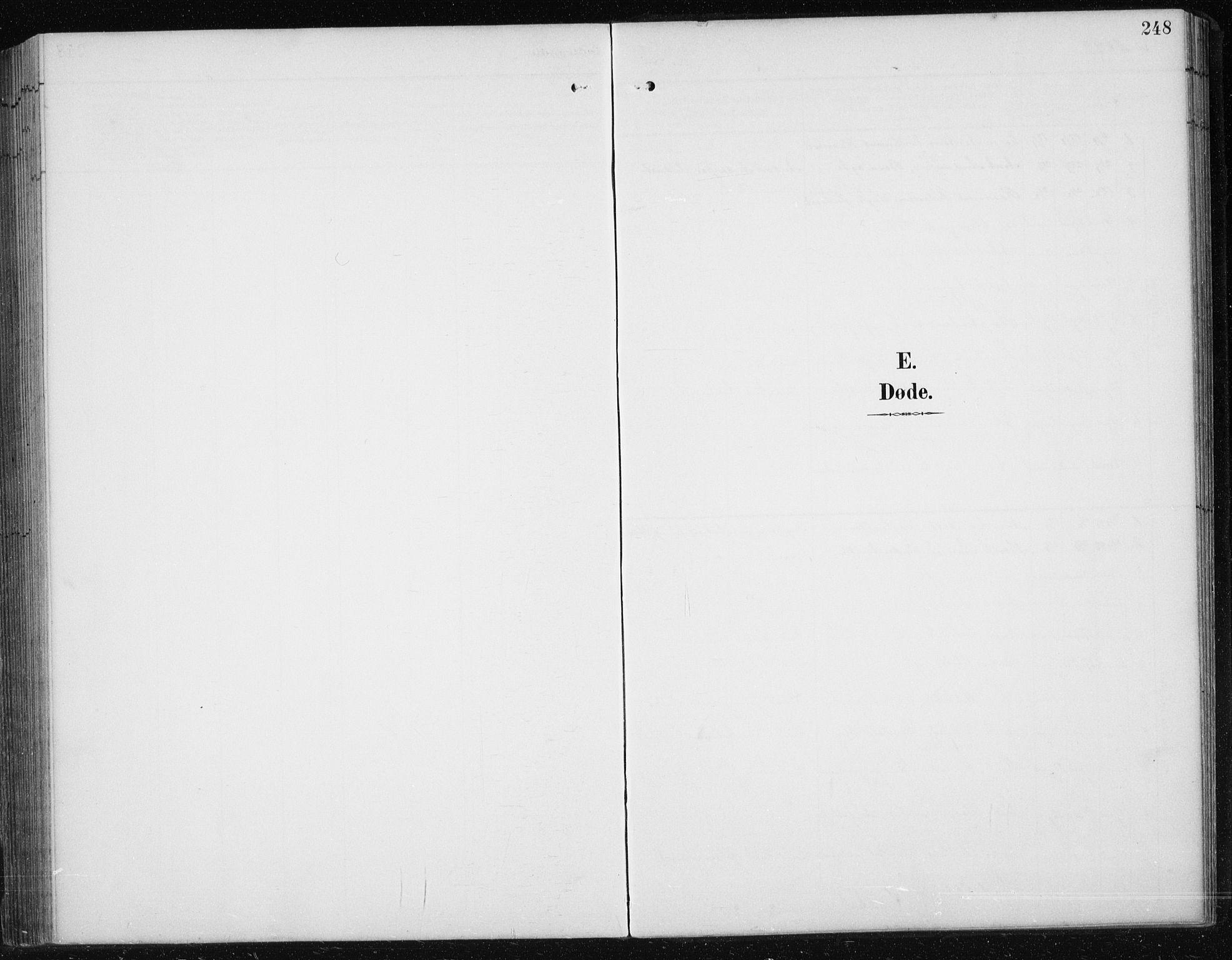 SAT, Ministerialprotokoller, klokkerbøker og fødselsregistre - Sør-Trøndelag, 674/L0876: Klokkerbok nr. 674C03, 1892-1912, s. 248