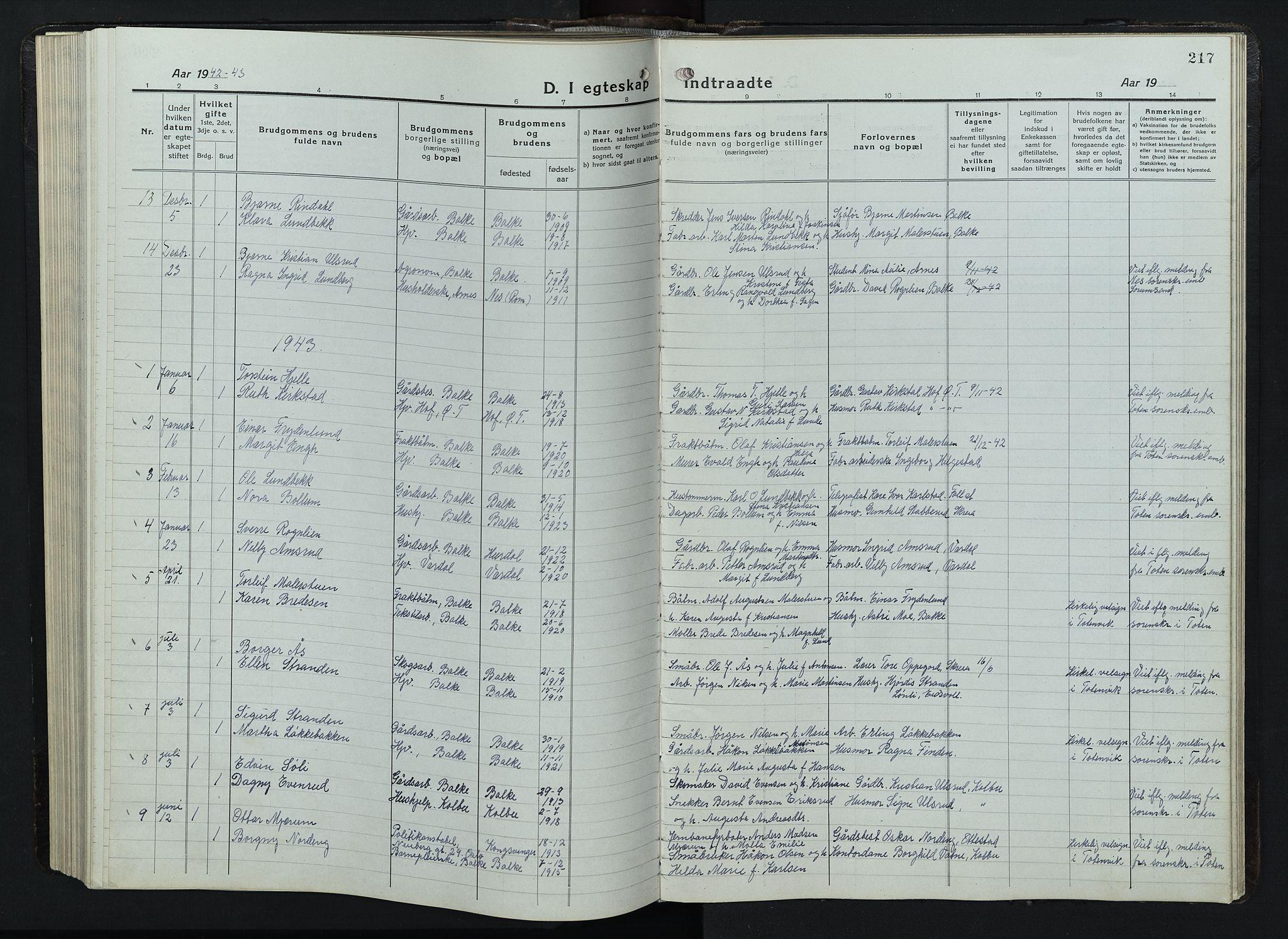 SAH, Balke prestekontor, Klokkerbok nr. 1, 1920-1955, s. 217
