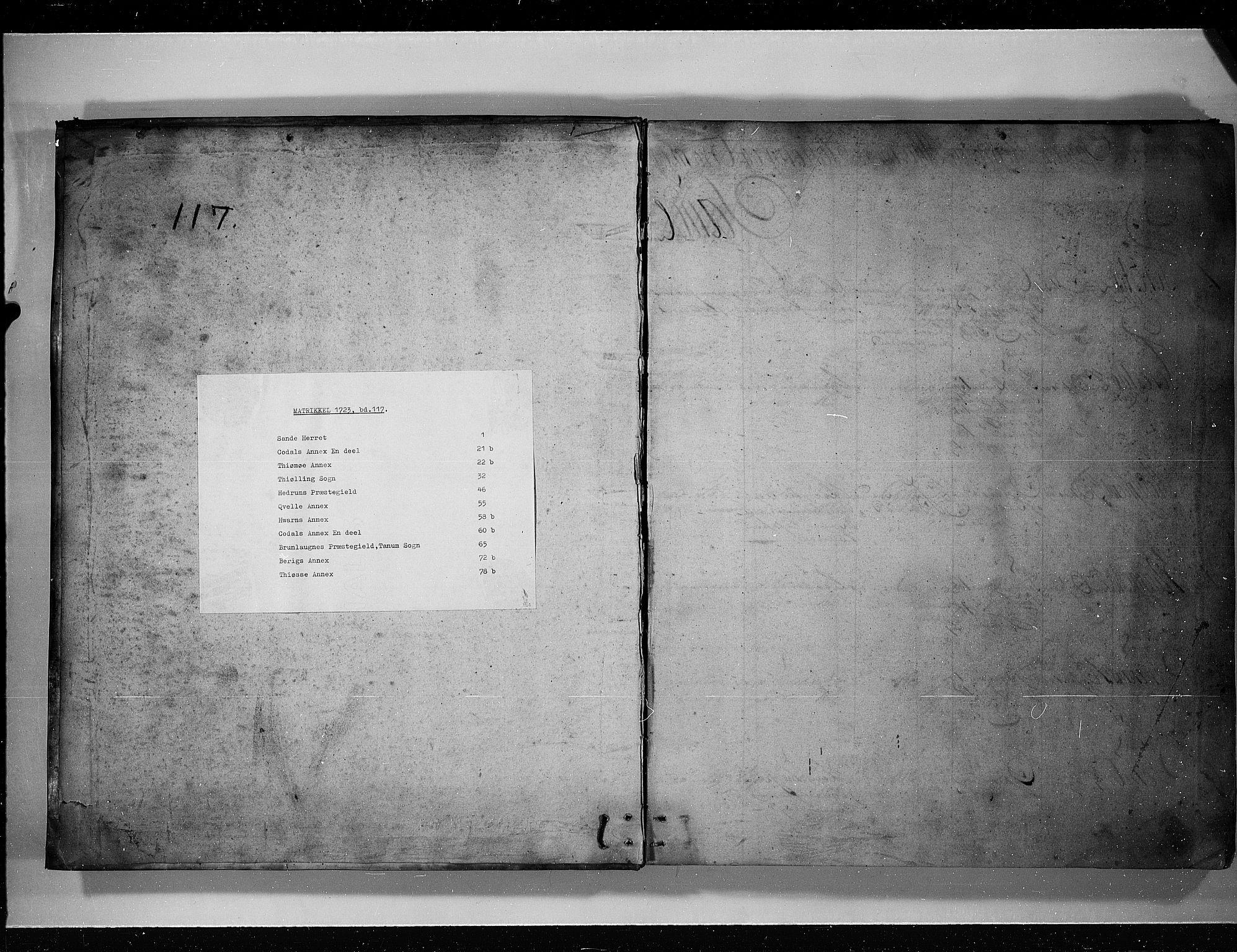 RA, Rentekammeret inntil 1814, Realistisk ordnet avdeling, N/Nb/Nbf/L0117: Larvik grevskap eksaminasjonsprotokoll, 1723, s. upaginert