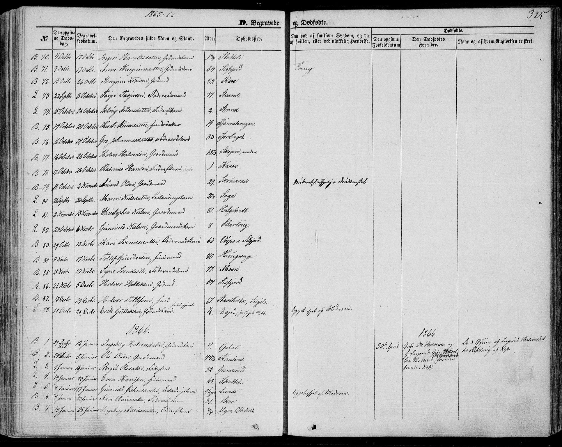 SAKO, Bø kirkebøker, F/Fa/L0009: Ministerialbok nr. 9, 1862-1879, s. 325