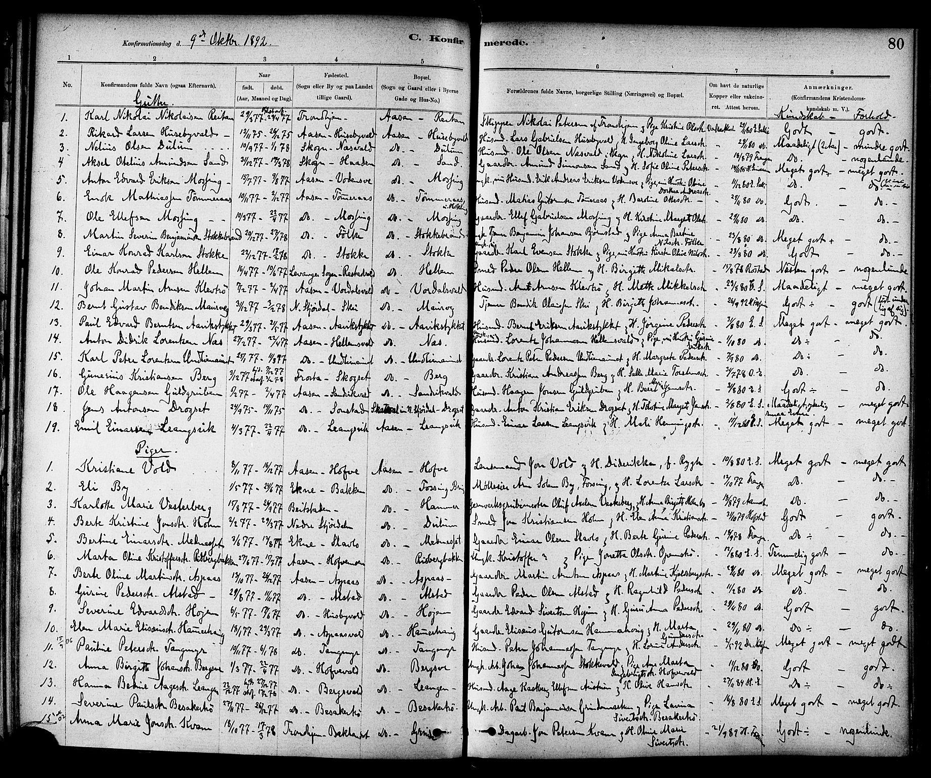 SAT, Ministerialprotokoller, klokkerbøker og fødselsregistre - Nord-Trøndelag, 714/L0130: Ministerialbok nr. 714A01, 1878-1895, s. 80