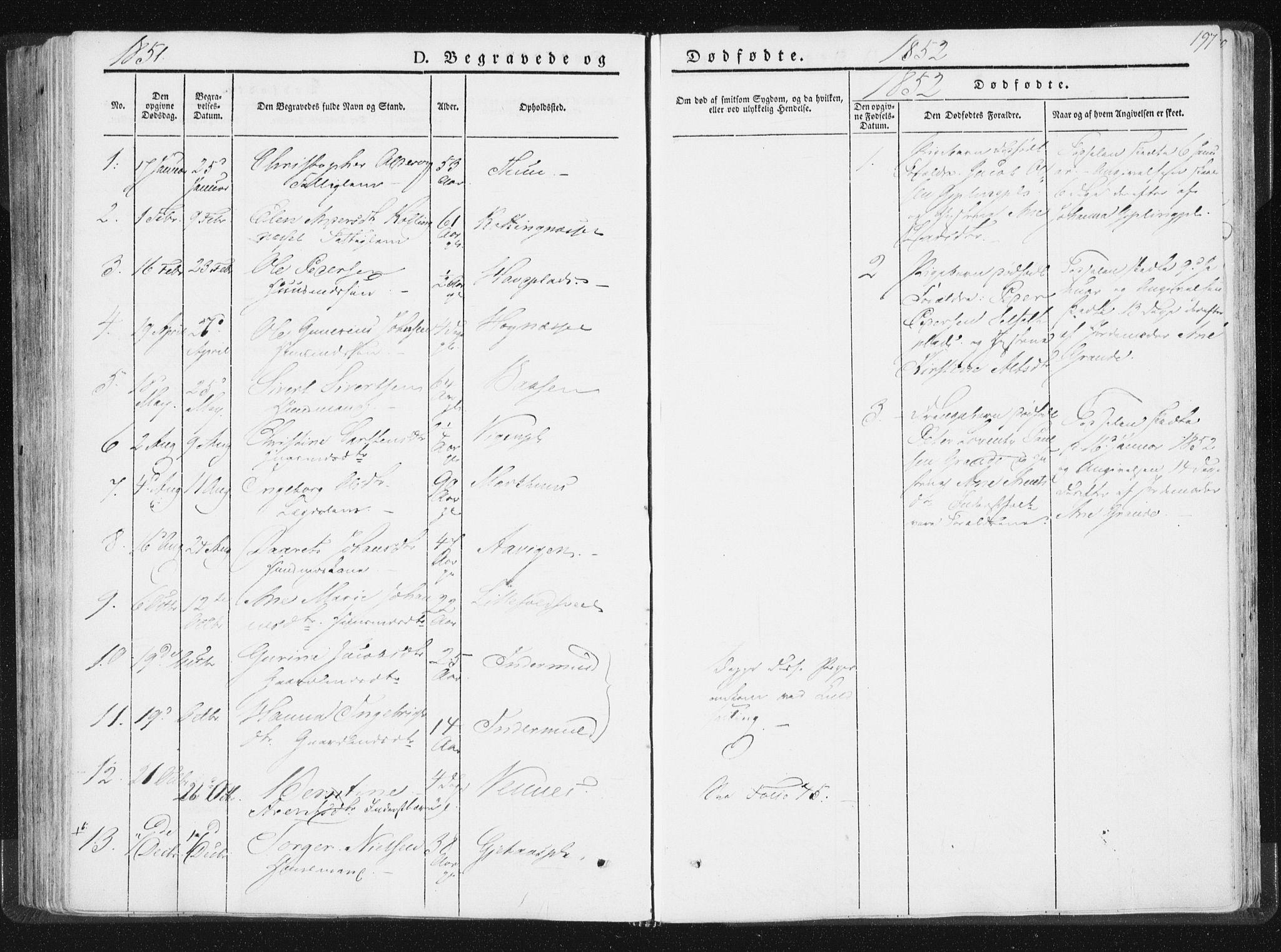 SAT, Ministerialprotokoller, klokkerbøker og fødselsregistre - Nord-Trøndelag, 744/L0418: Ministerialbok nr. 744A02, 1843-1866, s. 197