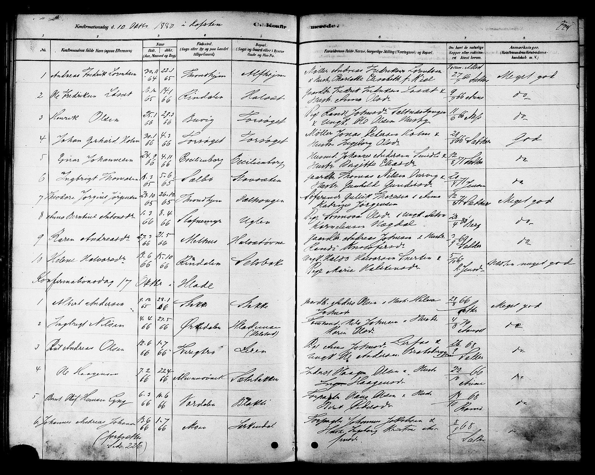 SAT, Ministerialprotokoller, klokkerbøker og fødselsregistre - Sør-Trøndelag, 606/L0294: Ministerialbok nr. 606A09, 1878-1886, s. 224