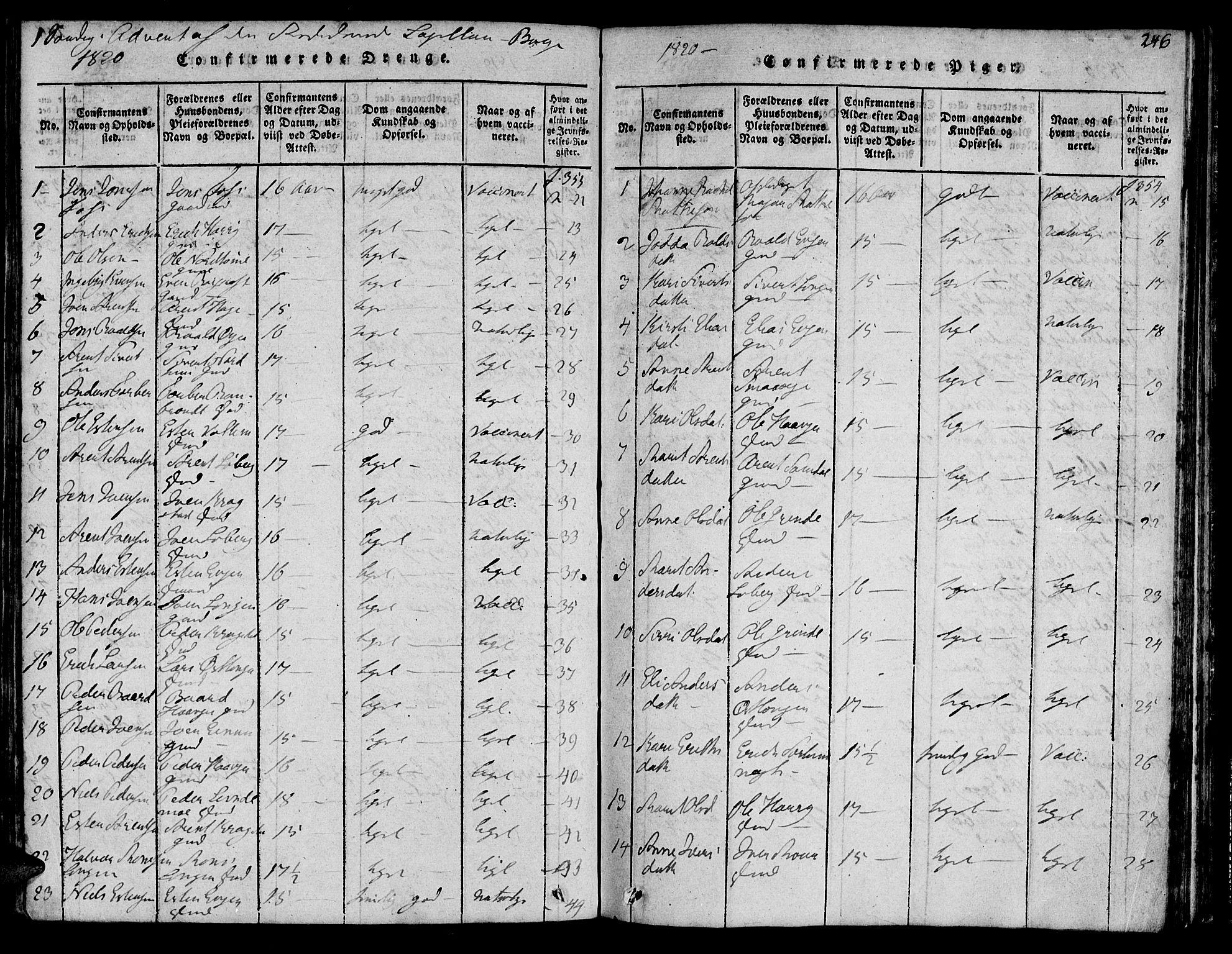 SAT, Ministerialprotokoller, klokkerbøker og fødselsregistre - Sør-Trøndelag, 692/L1102: Ministerialbok nr. 692A02, 1816-1842, s. 246