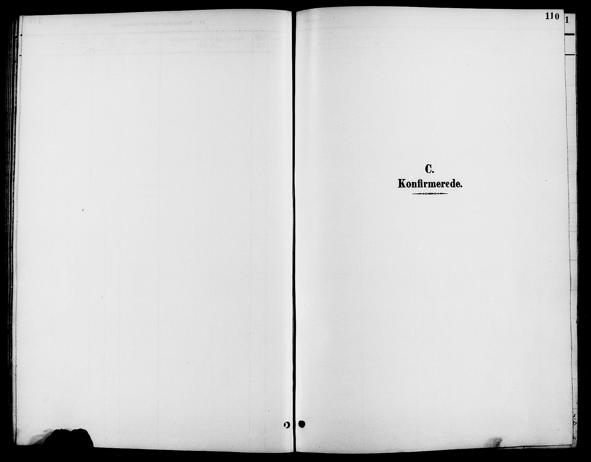 SAH, Biri prestekontor, Klokkerbok nr. 4, 1892-1909, s. 110