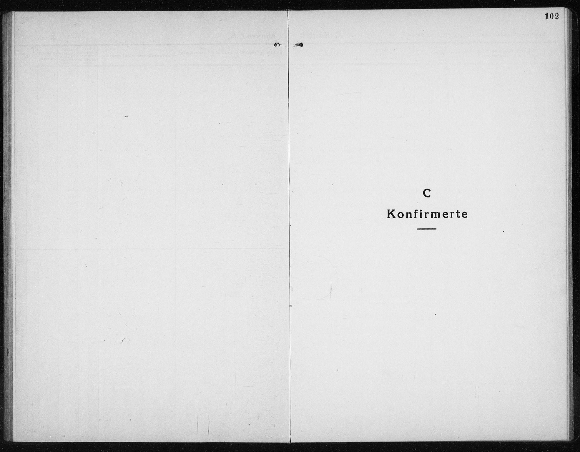 SAT, Ministerialprotokoller, klokkerbøker og fødselsregistre - Sør-Trøndelag, 689/L1045: Klokkerbok nr. 689C04, 1923-1940, s. 102