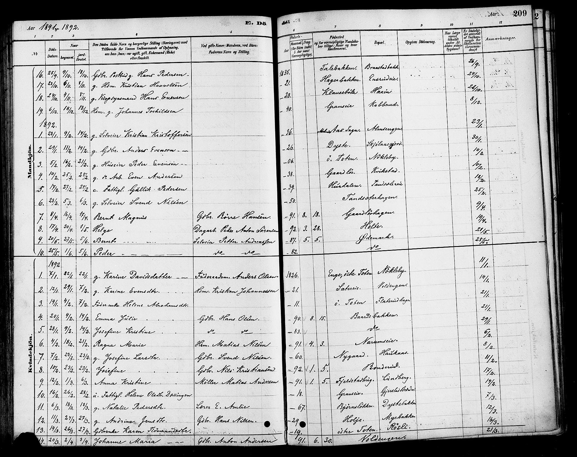 SAH, Vestre Toten prestekontor, H/Ha/Haa/L0010: Ministerialbok nr. 10, 1878-1894, s. 209