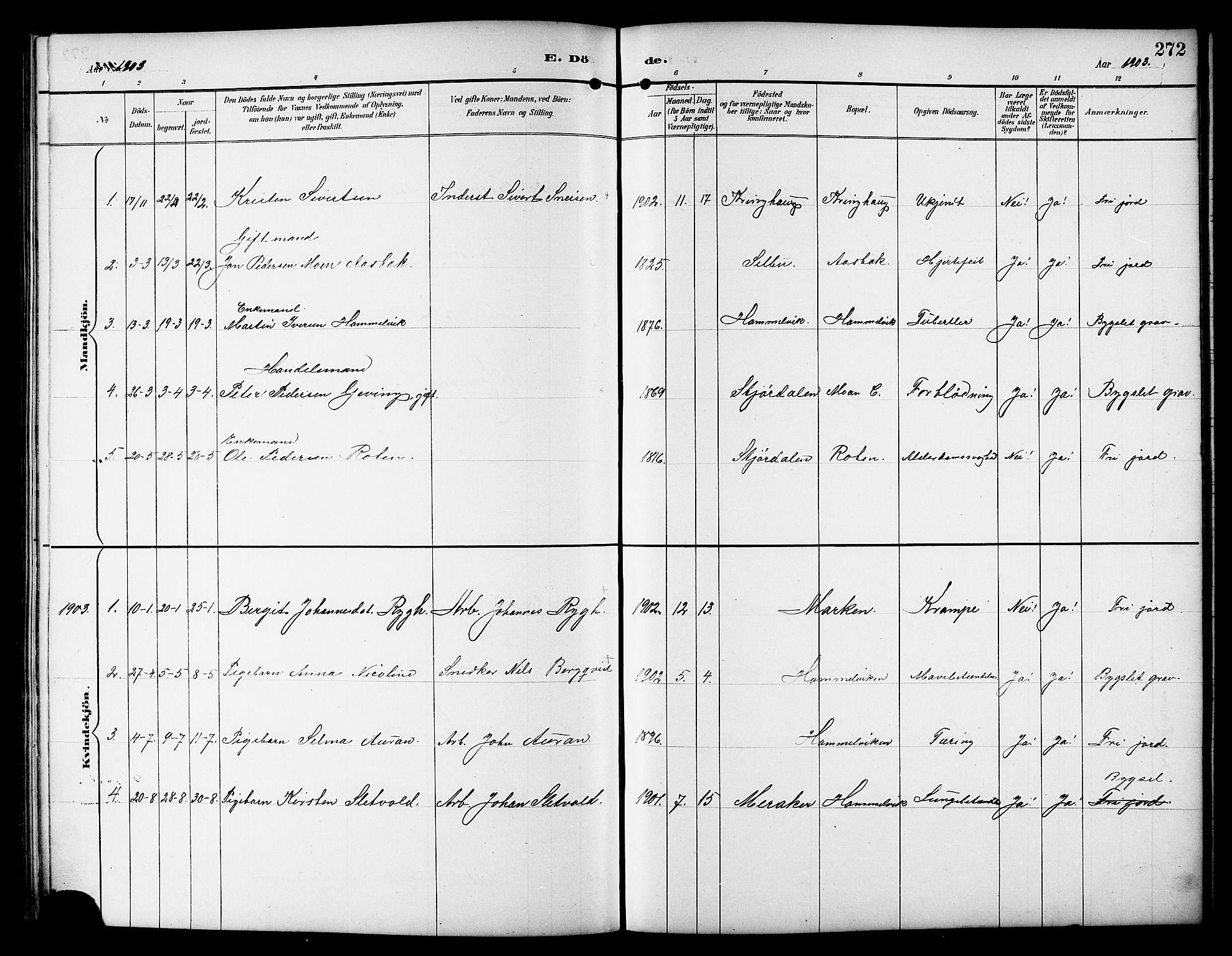 SAT, Ministerialprotokoller, klokkerbøker og fødselsregistre - Sør-Trøndelag, 617/L0431: Klokkerbok nr. 617C01, 1889-1910, s. 272