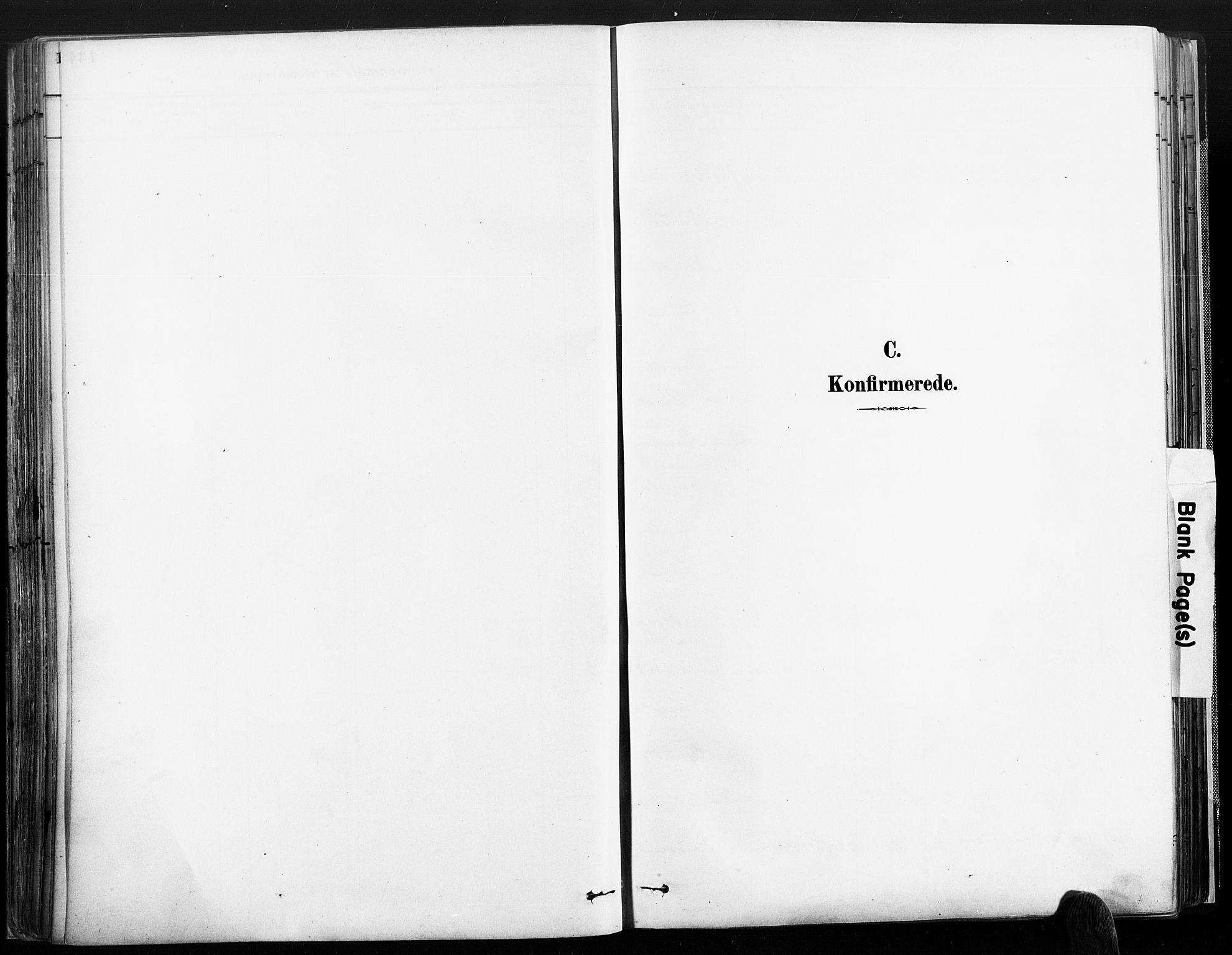 SAK, Øyestad sokneprestkontor, F/Fa/L0018: Ministerialbok nr. A 18, 1897-1907, s. 134