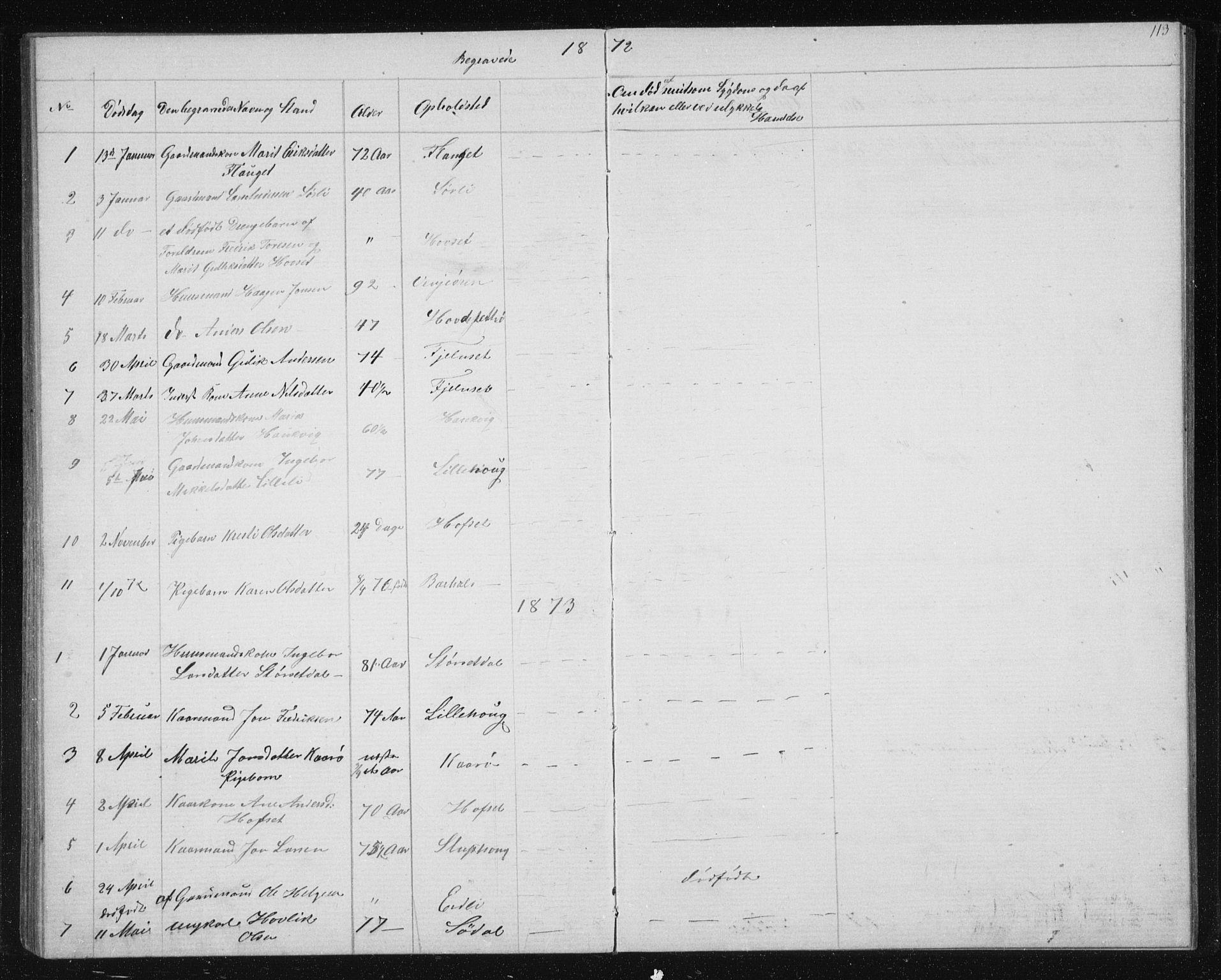 SAT, Ministerialprotokoller, klokkerbøker og fødselsregistre - Sør-Trøndelag, 631/L0513: Klokkerbok nr. 631C01, 1869-1879, s. 113