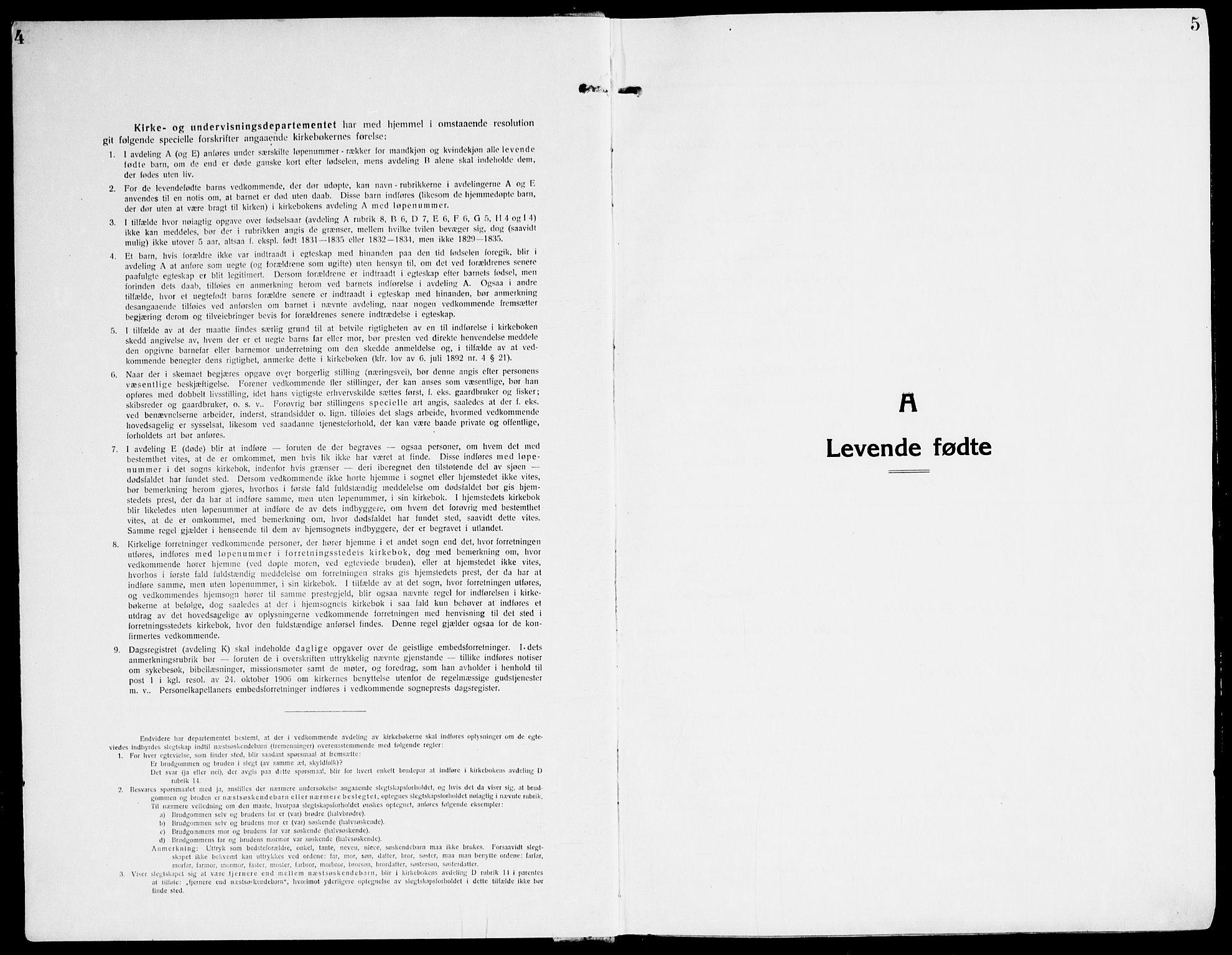 SAT, Ministerialprotokoller, klokkerbøker og fødselsregistre - Sør-Trøndelag, 607/L0321: Ministerialbok nr. 607A05, 1916-1935, s. 4-5