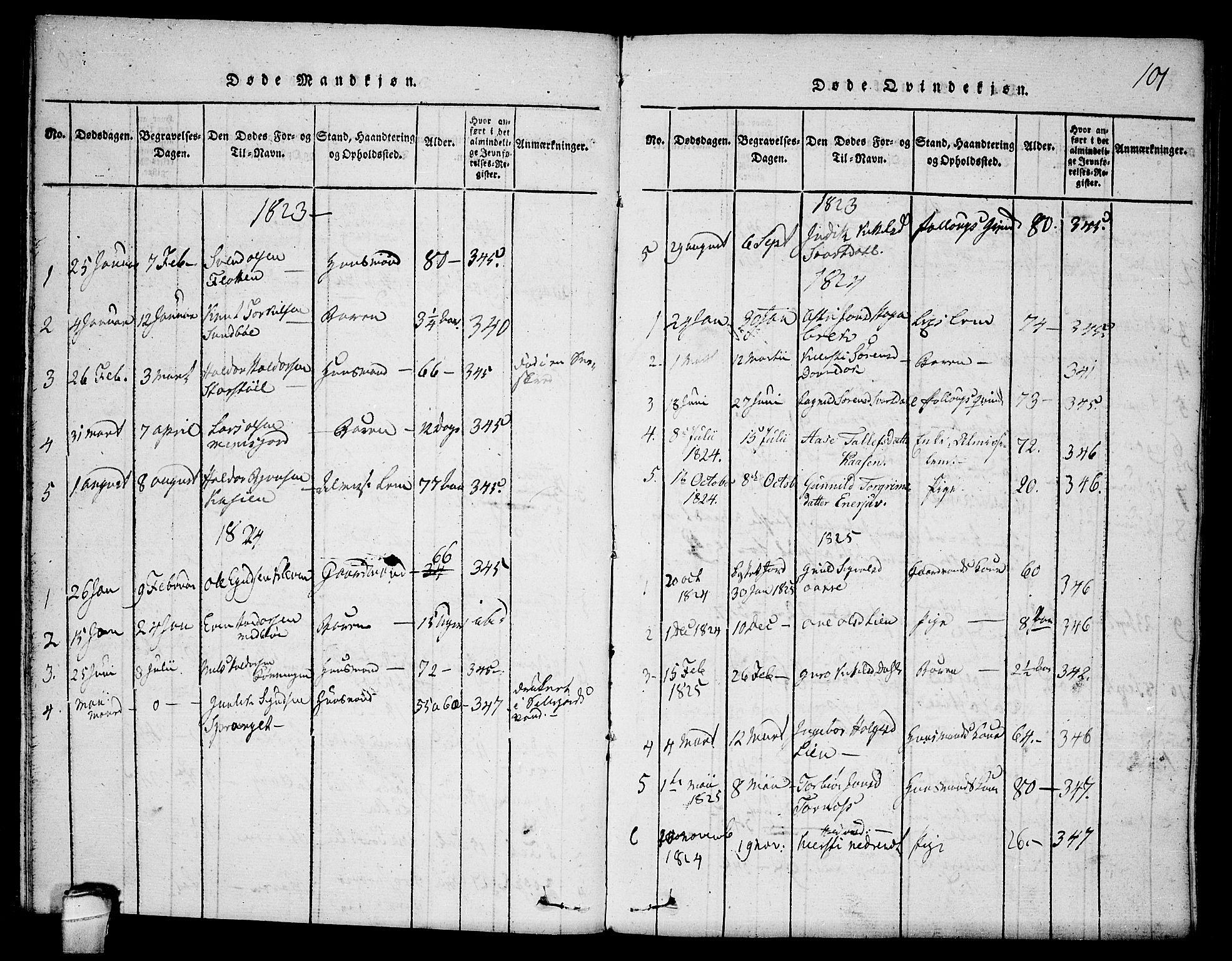 SAKO, Seljord kirkebøker, F/Fb/L0001: Ministerialbok nr. II 1, 1815-1831, s. 101