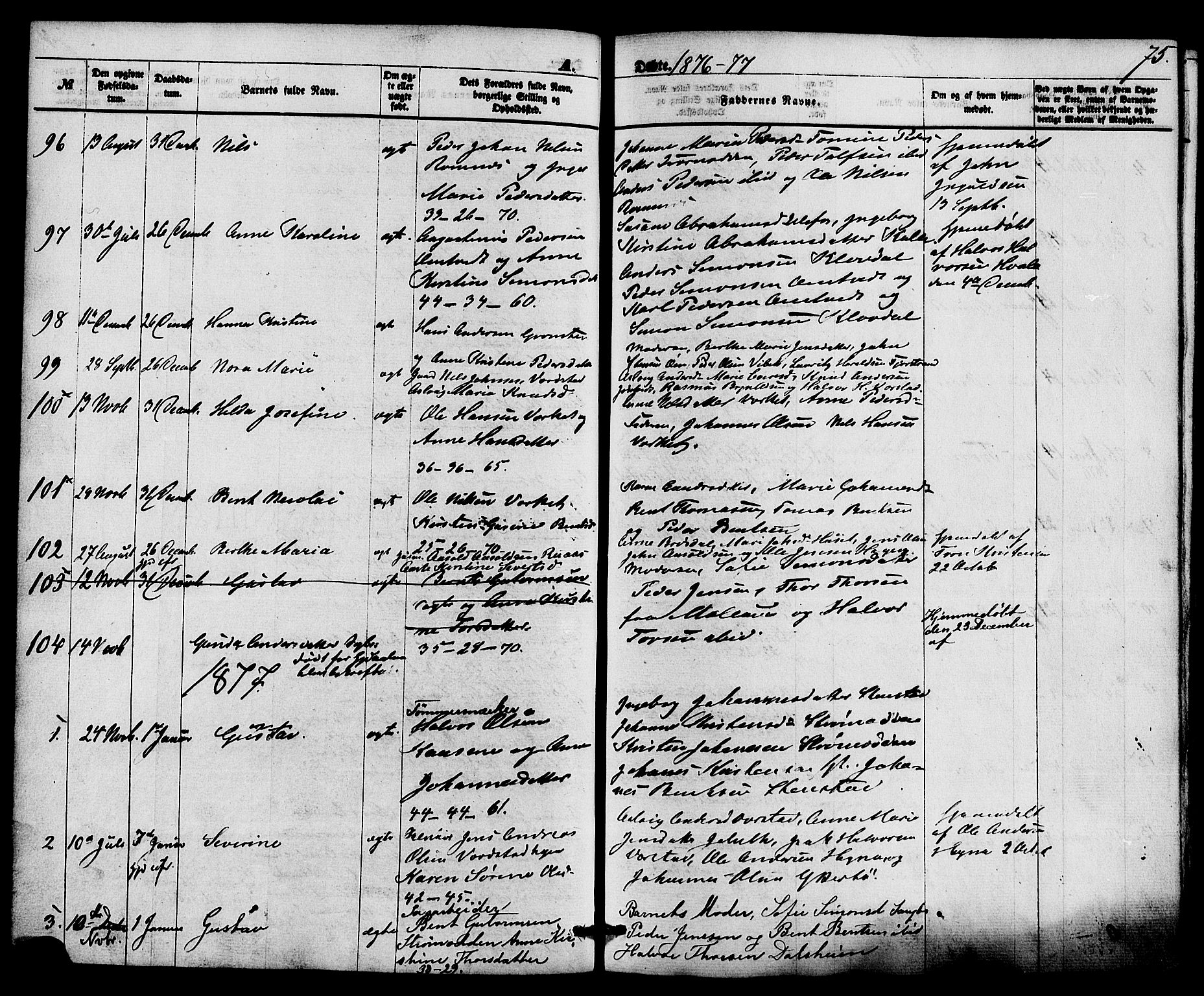 SAKO, Holla kirkebøker, F/Fa/L0007: Ministerialbok nr. 7, 1869-1881, s. 75