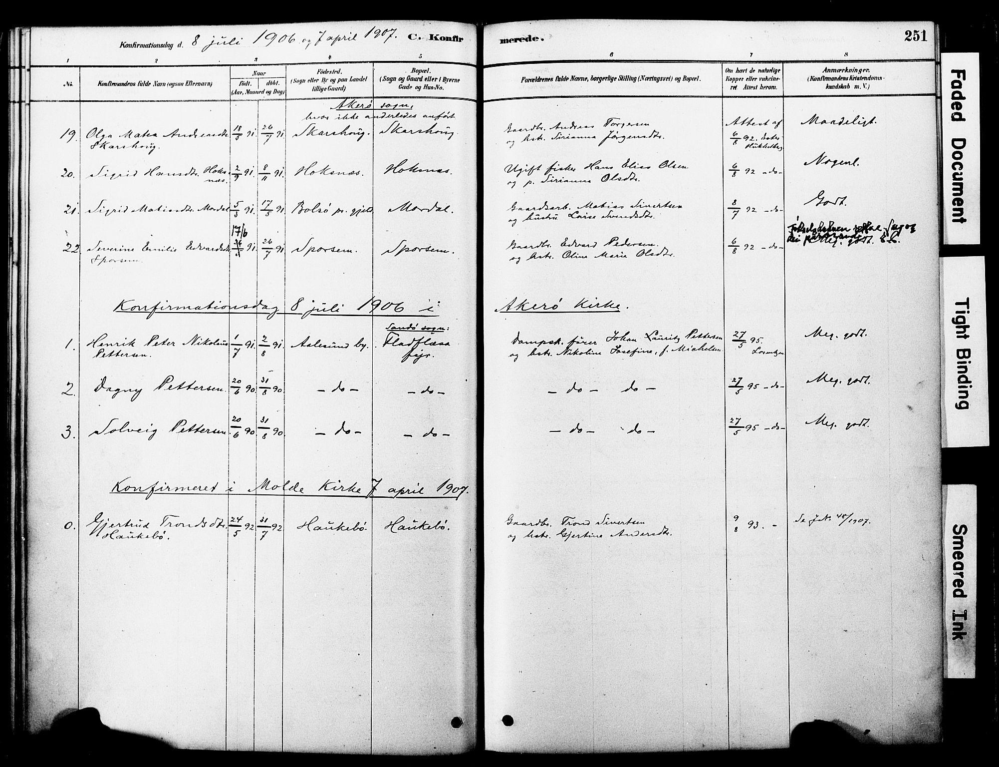 SAT, Ministerialprotokoller, klokkerbøker og fødselsregistre - Møre og Romsdal, 560/L0721: Ministerialbok nr. 560A05, 1878-1917, s. 251