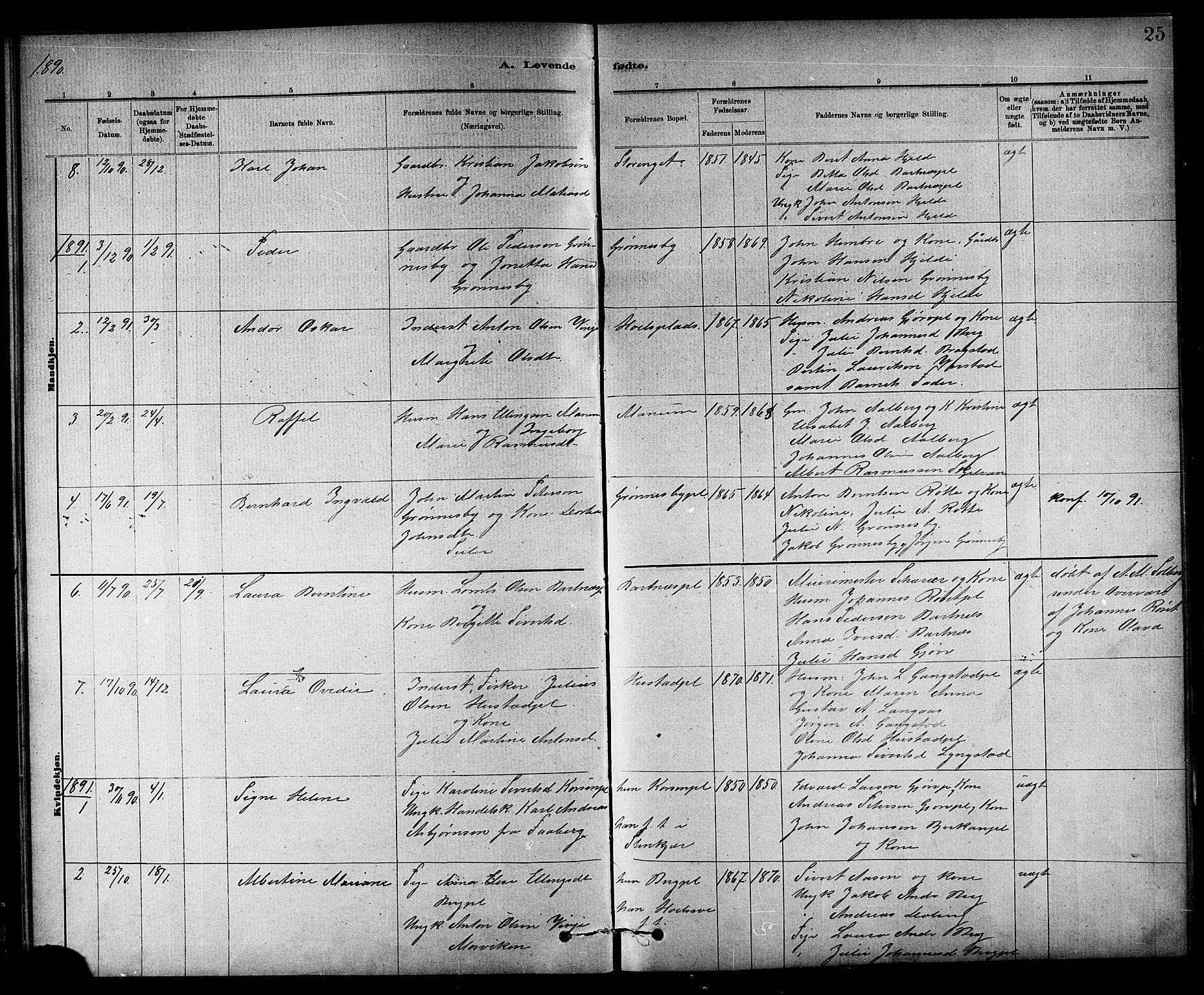 SAT, Ministerialprotokoller, klokkerbøker og fødselsregistre - Nord-Trøndelag, 732/L0318: Klokkerbok nr. 732C02, 1881-1911, s. 25