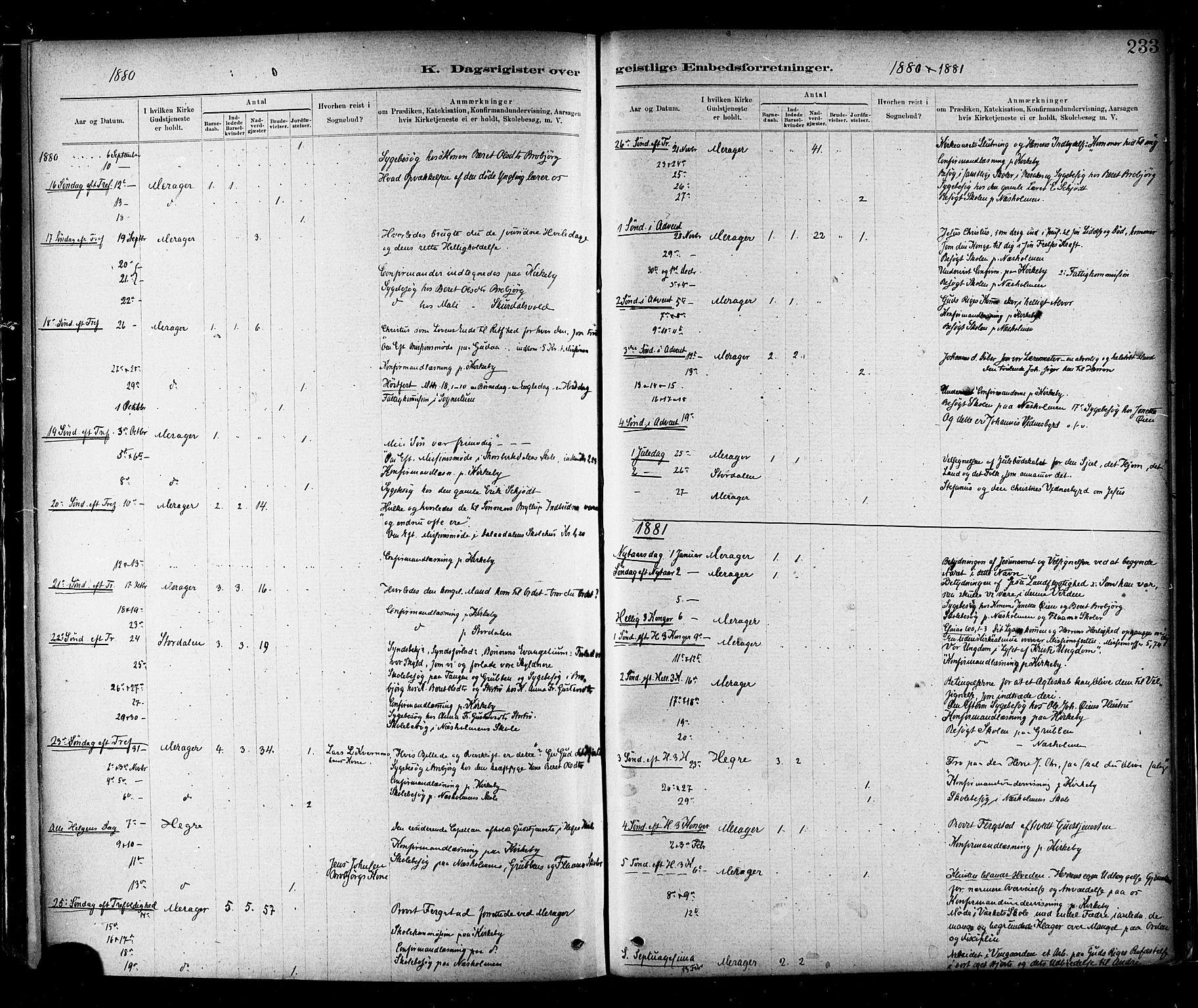 SAT, Ministerialprotokoller, klokkerbøker og fødselsregistre - Nord-Trøndelag, 706/L0047: Ministerialbok nr. 706A03, 1878-1892, s. 233