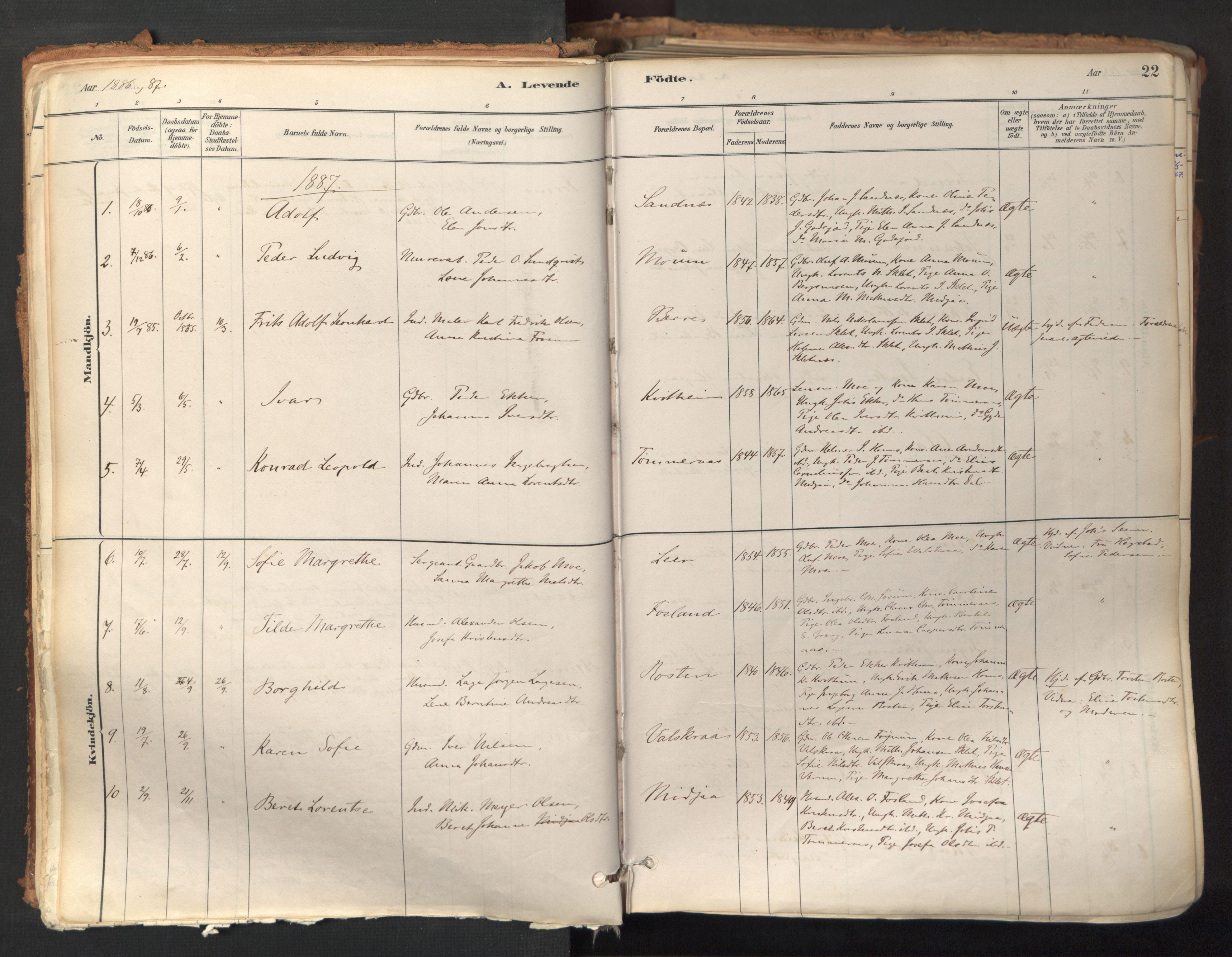 SAT, Ministerialprotokoller, klokkerbøker og fødselsregistre - Nord-Trøndelag, 758/L0519: Ministerialbok nr. 758A04, 1880-1926, s. 22