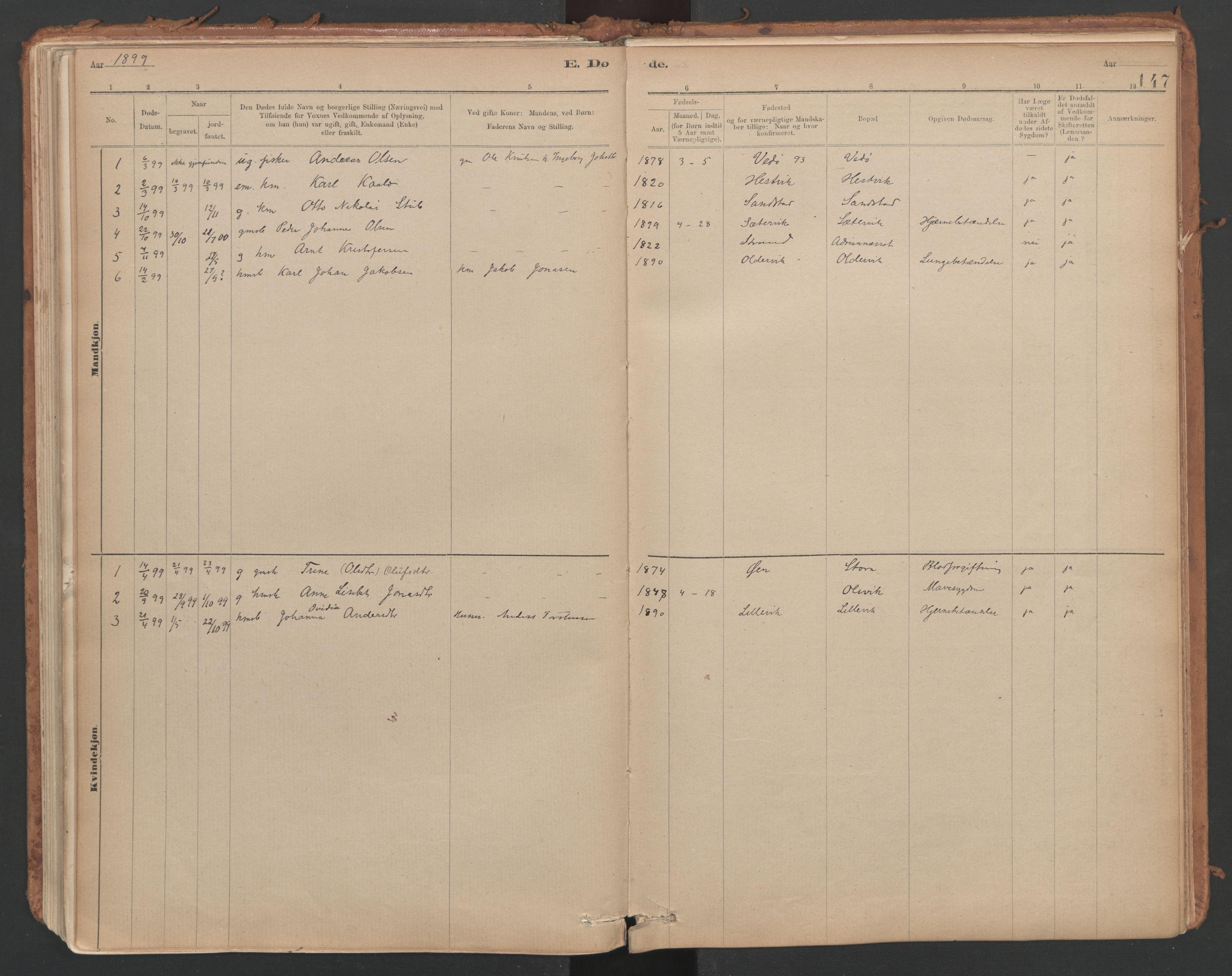 SAT, Ministerialprotokoller, klokkerbøker og fødselsregistre - Sør-Trøndelag, 639/L0572: Ministerialbok nr. 639A01, 1890-1920, s. 147