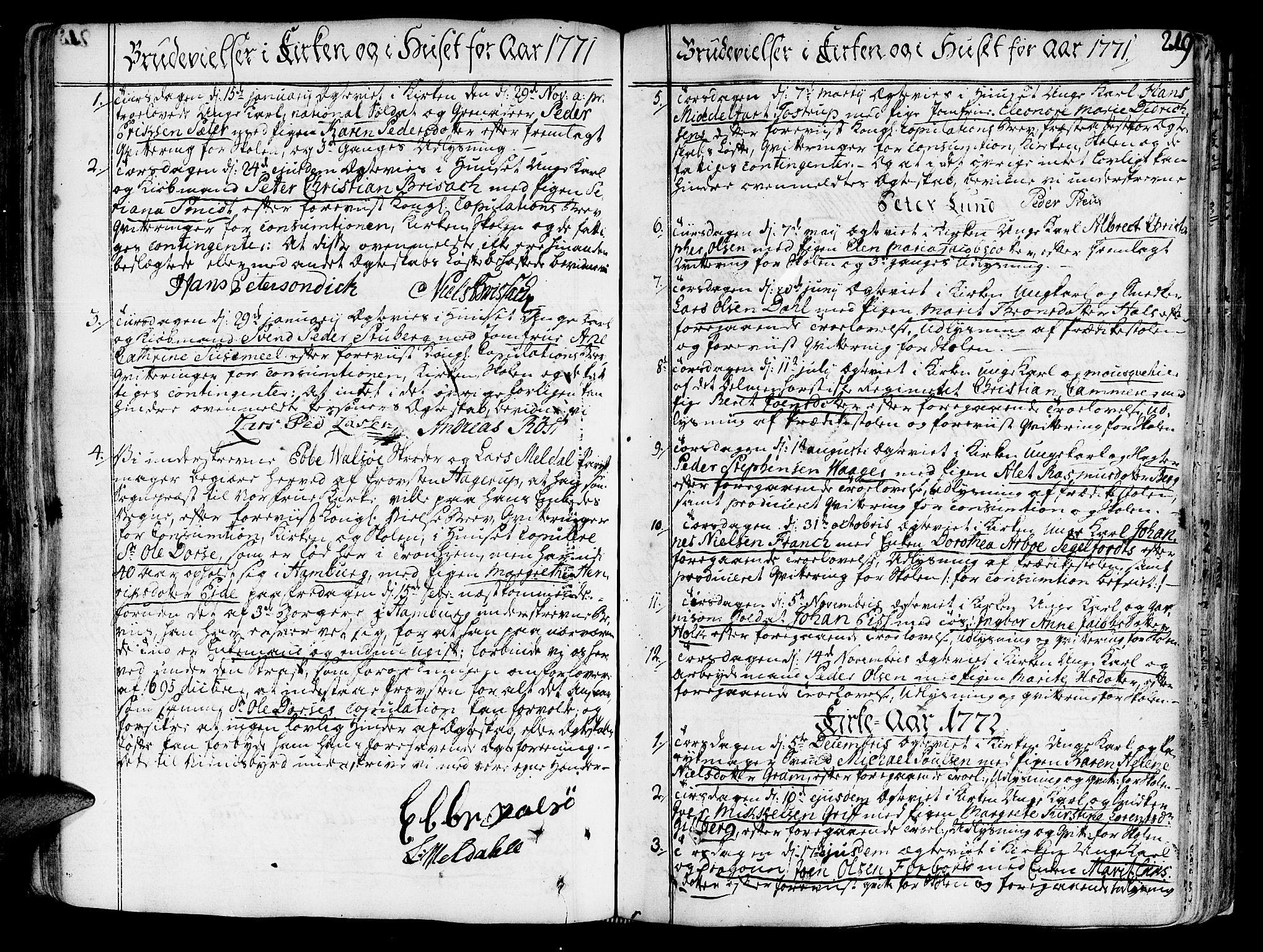 SAT, Ministerialprotokoller, klokkerbøker og fødselsregistre - Sør-Trøndelag, 602/L0103: Ministerialbok nr. 602A01, 1732-1774, s. 219