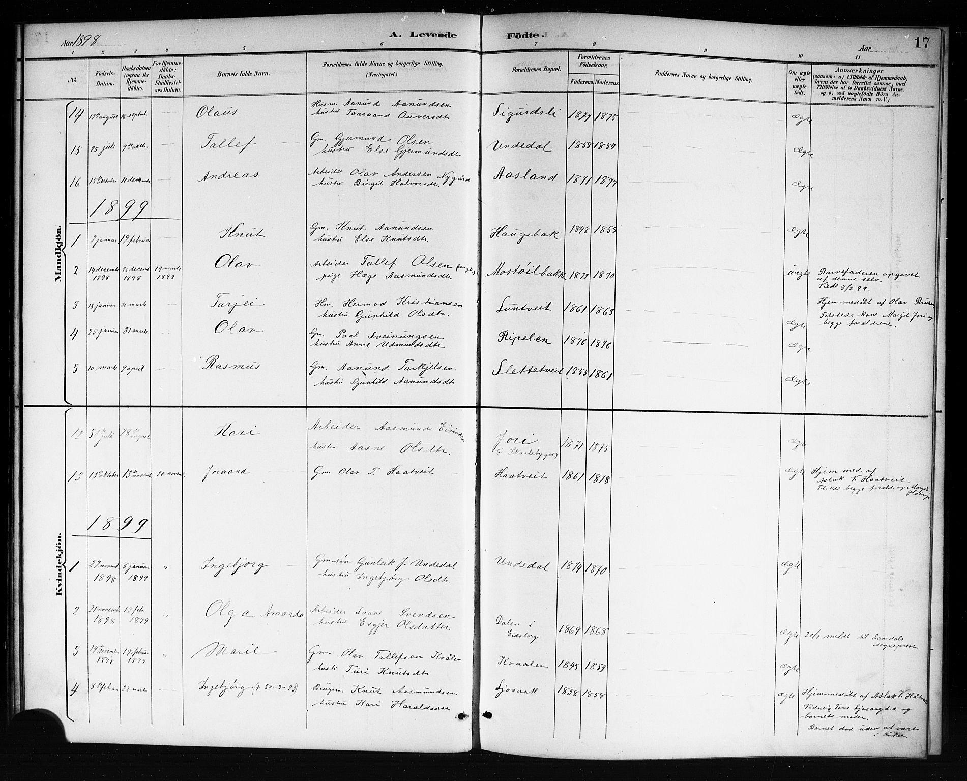 SAKO, Mo kirkebøker, G/Ga/L0002: Klokkerbok nr. I 2, 1892-1914, s. 17