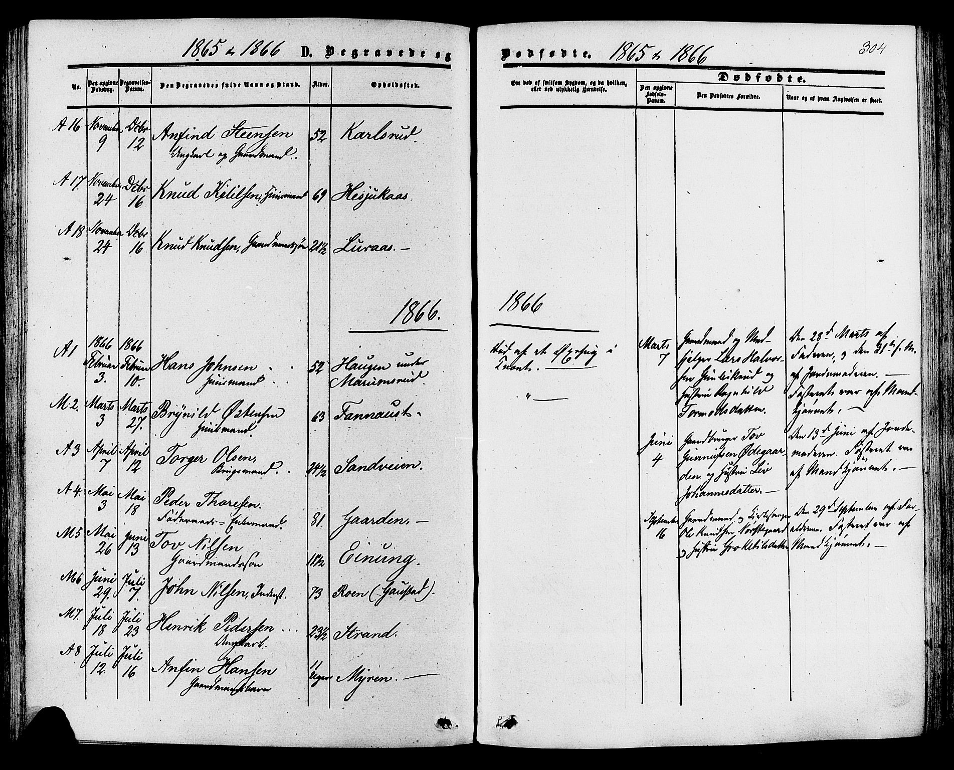 SAKO, Tinn kirkebøker, F/Fa/L0006: Ministerialbok nr. I 6, 1857-1878, s. 304