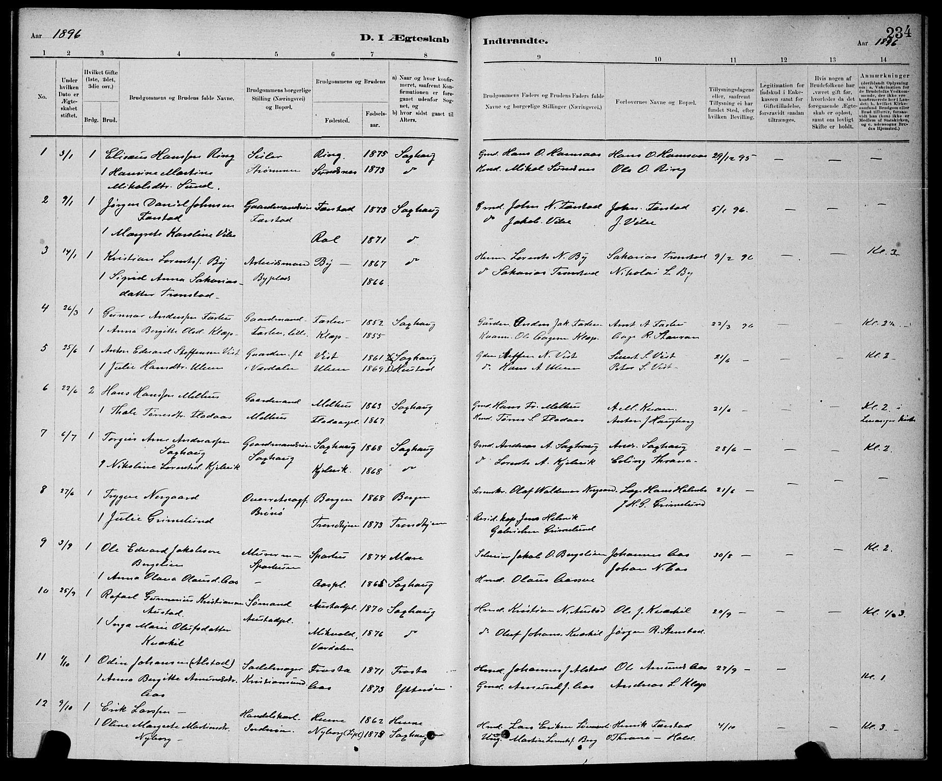 SAT, Ministerialprotokoller, klokkerbøker og fødselsregistre - Nord-Trøndelag, 730/L0301: Klokkerbok nr. 730C04, 1880-1897, s. 234
