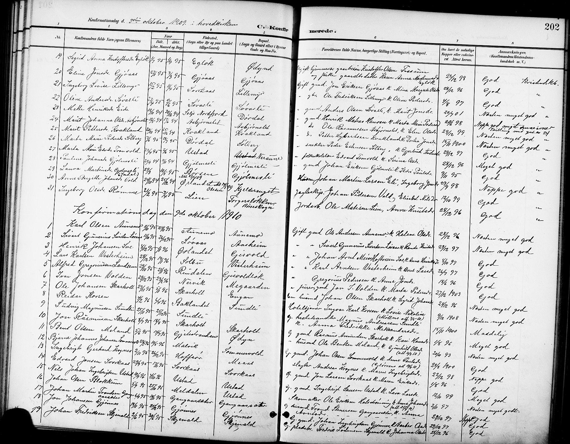 SAT, Ministerialprotokoller, klokkerbøker og fødselsregistre - Sør-Trøndelag, 668/L0819: Klokkerbok nr. 668C08, 1899-1912, s. 202
