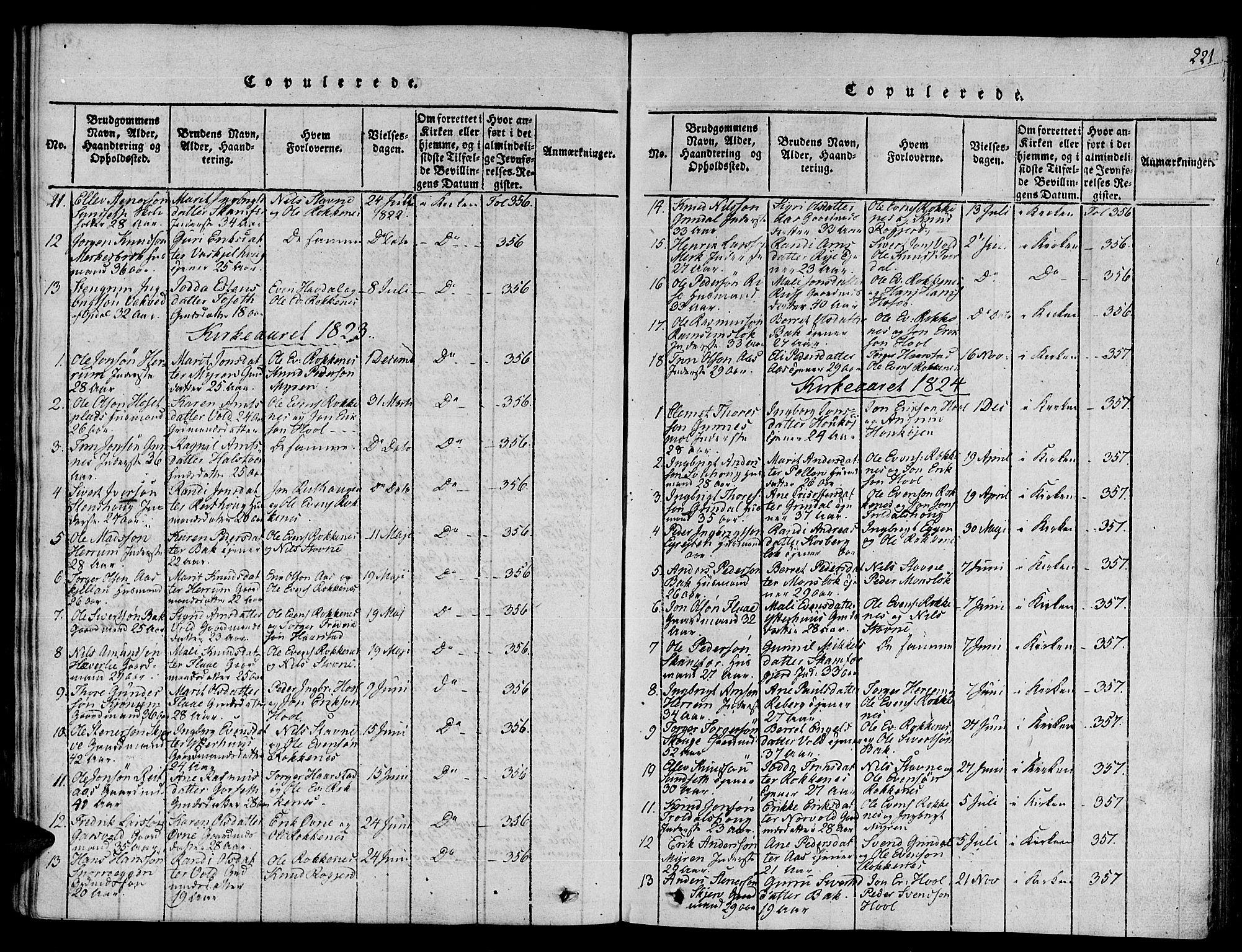 SAT, Ministerialprotokoller, klokkerbøker og fødselsregistre - Sør-Trøndelag, 672/L0854: Ministerialbok nr. 672A06 /2, 1816-1829, s. 221