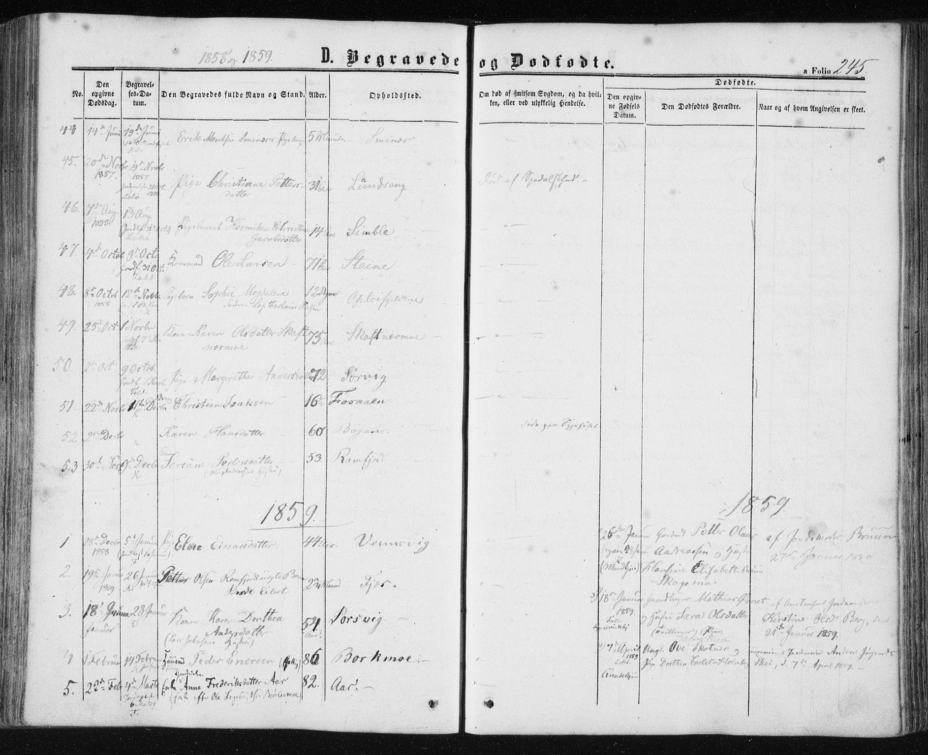 SAT, Ministerialprotokoller, klokkerbøker og fødselsregistre - Nord-Trøndelag, 780/L0641: Ministerialbok nr. 780A06, 1857-1874, s. 245