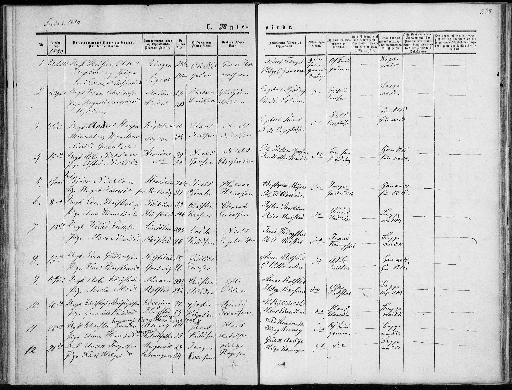 SAKO, Sigdal kirkebøker, F/Fa/L0008: Ministerialbok nr. I 8, 1850-1859, s. 238
