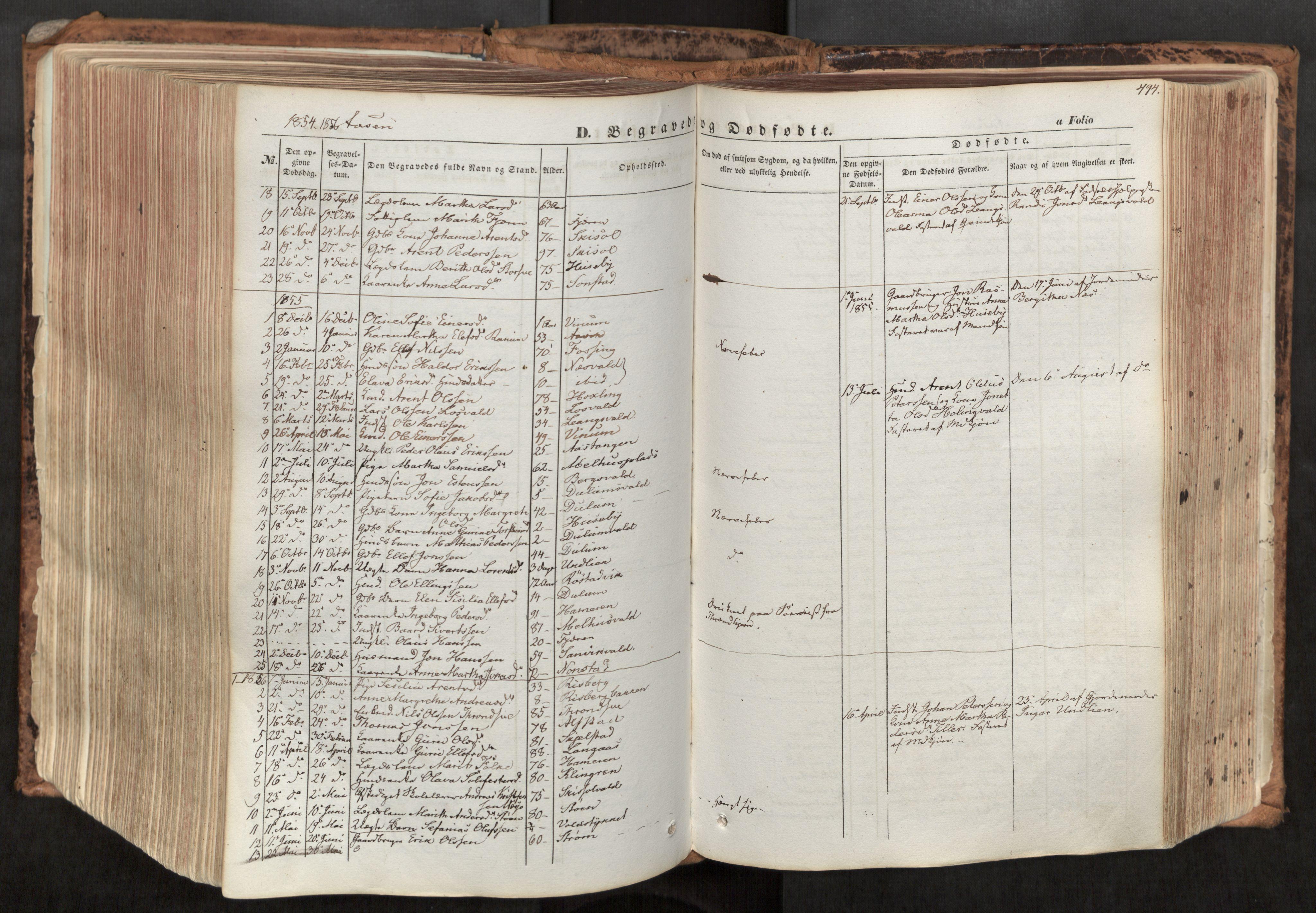 SAT, Ministerialprotokoller, klokkerbøker og fødselsregistre - Nord-Trøndelag, 713/L0116: Ministerialbok nr. 713A07, 1850-1877, s. 494
