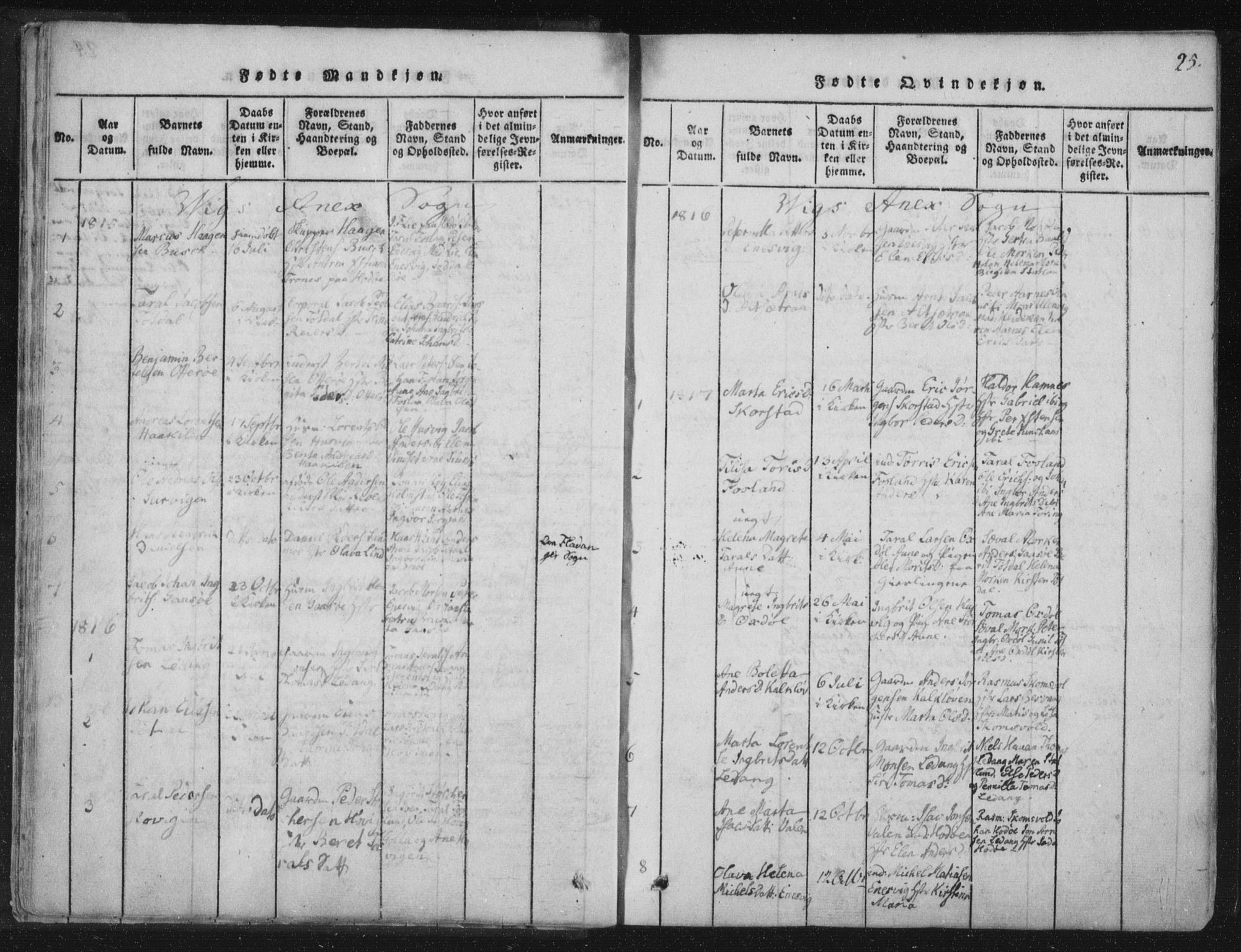 SAT, Ministerialprotokoller, klokkerbøker og fødselsregistre - Nord-Trøndelag, 773/L0609: Ministerialbok nr. 773A03 /2, 1815-1830, s. 25