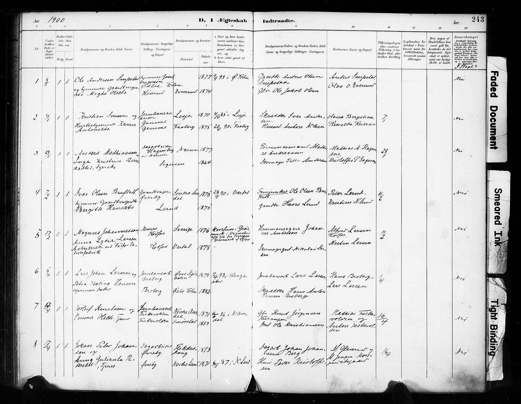 SAH, Vestre Toten prestekontor, Ministerialbok nr. 11, 1895-1906, s. 243