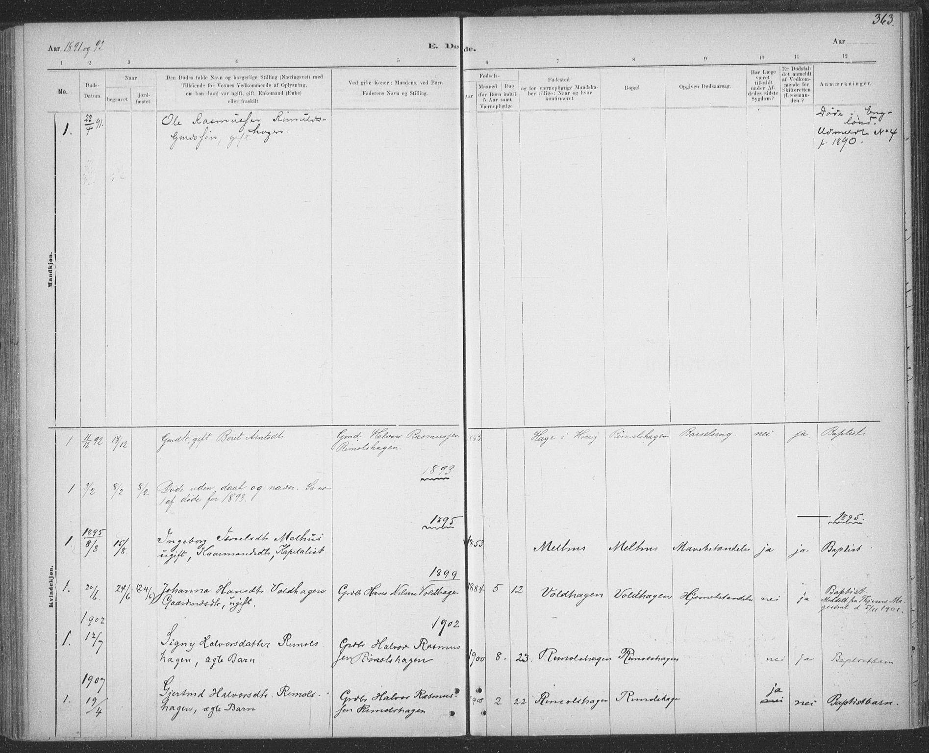 SAT, Ministerialprotokoller, klokkerbøker og fødselsregistre - Sør-Trøndelag, 691/L1085: Ministerialbok nr. 691A17, 1887-1908, s. 363