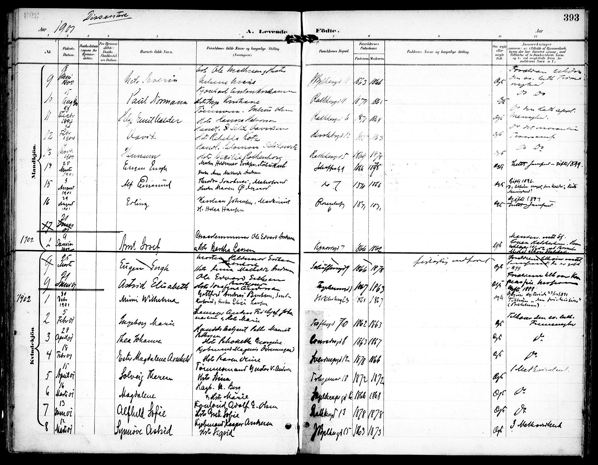 SAO, Petrus prestekontor Kirkebøker, F/Fa/L0008: Ministerialbok nr. 8, 1899-1909, s. 393