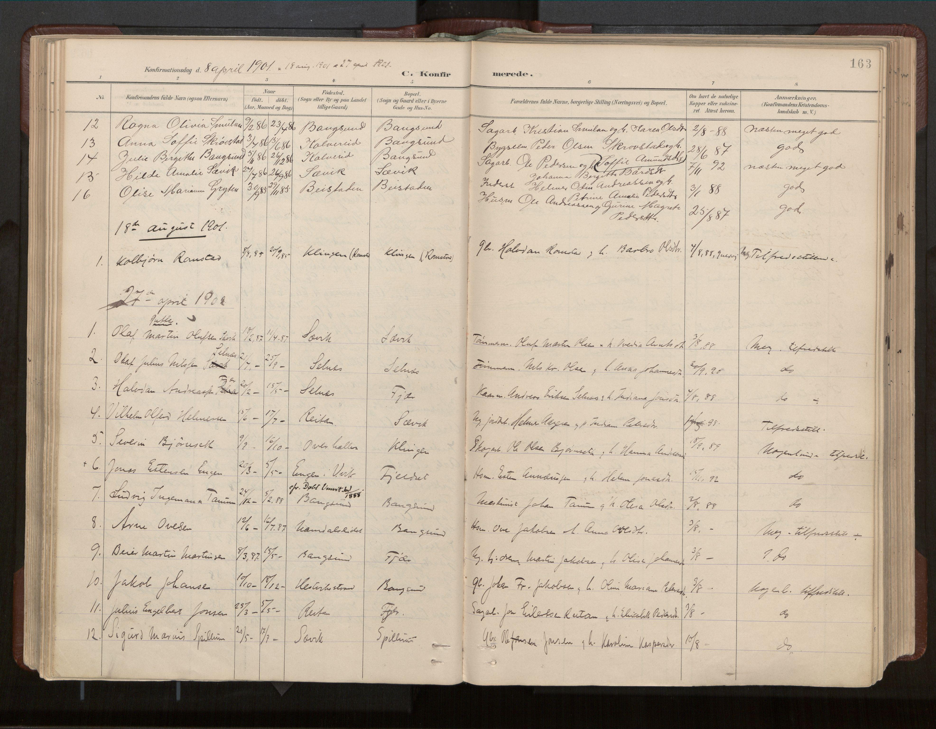 SAT, Ministerialprotokoller, klokkerbøker og fødselsregistre - Nord-Trøndelag, 770/L0589: Ministerialbok nr. 770A03, 1887-1929, s. 163